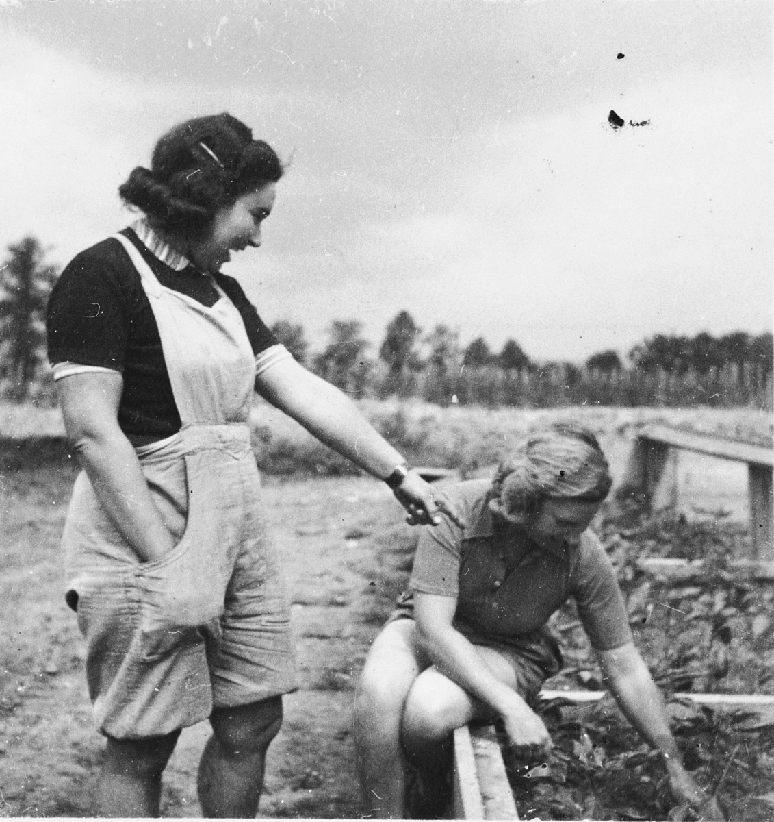 Two young Jewish women tend the fields outside Theresienstadt after the liberation.  Pictured are Annie Witrofsky and a woman named Wilma Schick.