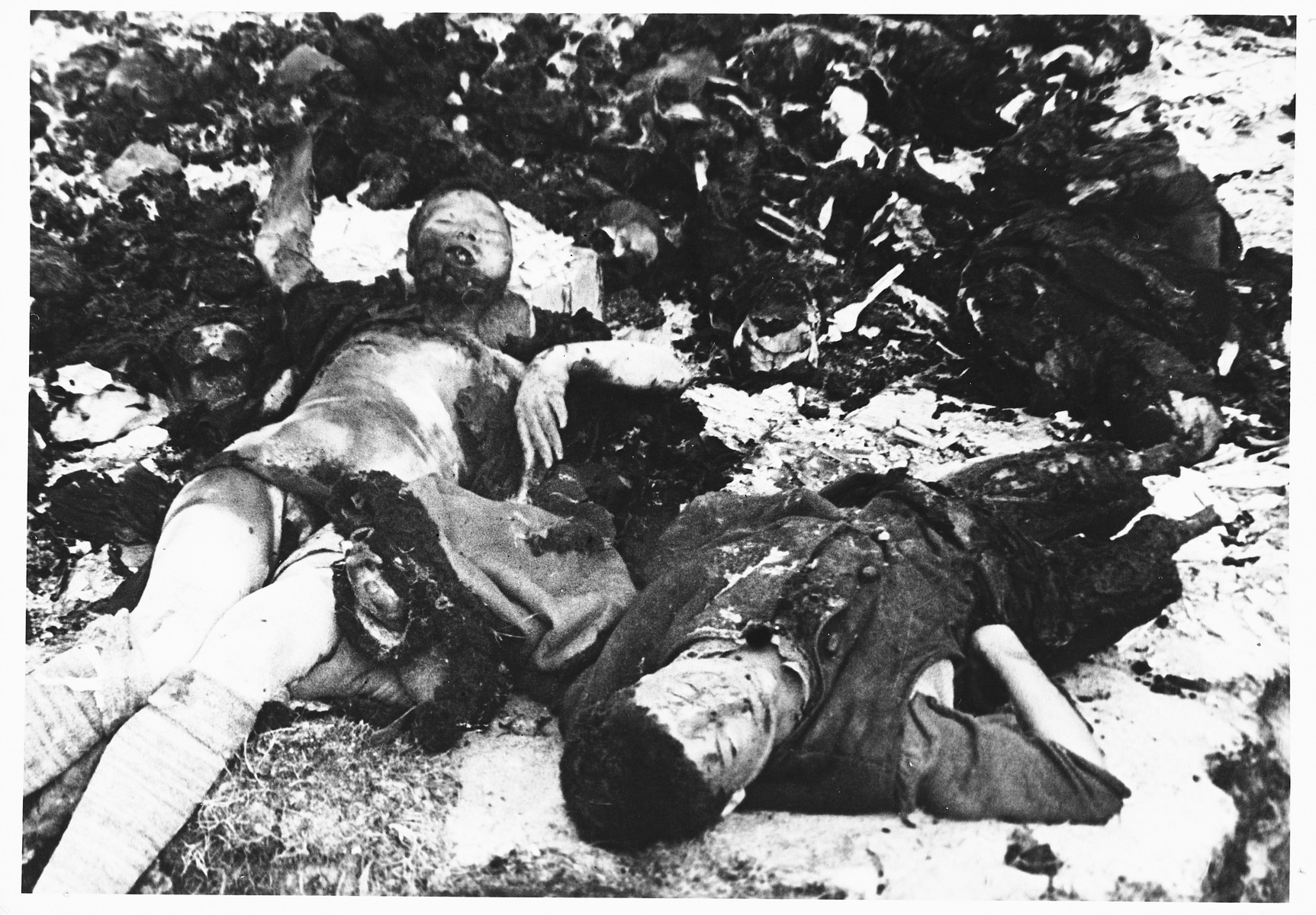 Postwar view of burned corpses in the Klooga concentration camp.