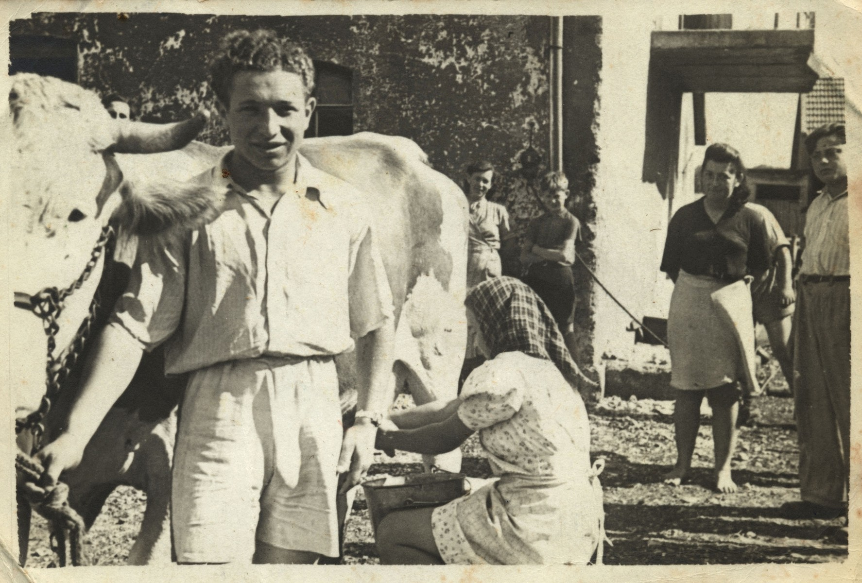 A young Jewish man holds onto a cow while a woman milks it on a kibbutz hachshara in Germany.   Pictured standing second from right  may be the donor Juta Bergman.