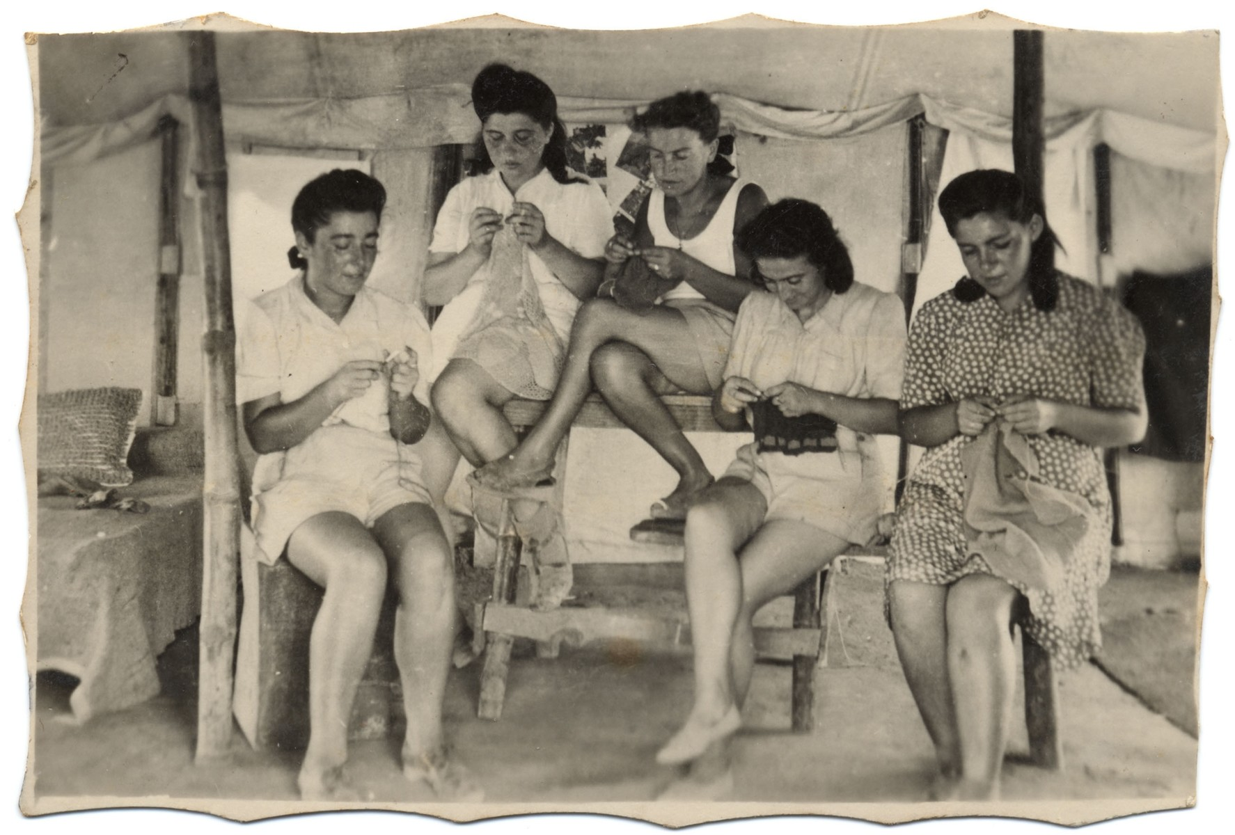 Group portrait of Jewish women knitting in a tent in an internment  camp in Cyprus.