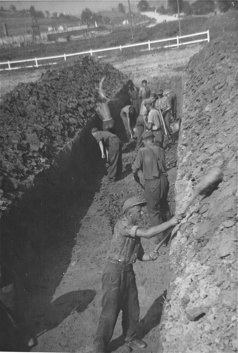 Austrian civilians prepare a mass grave for the bodies of former inmates at the Gusen concentration camp.