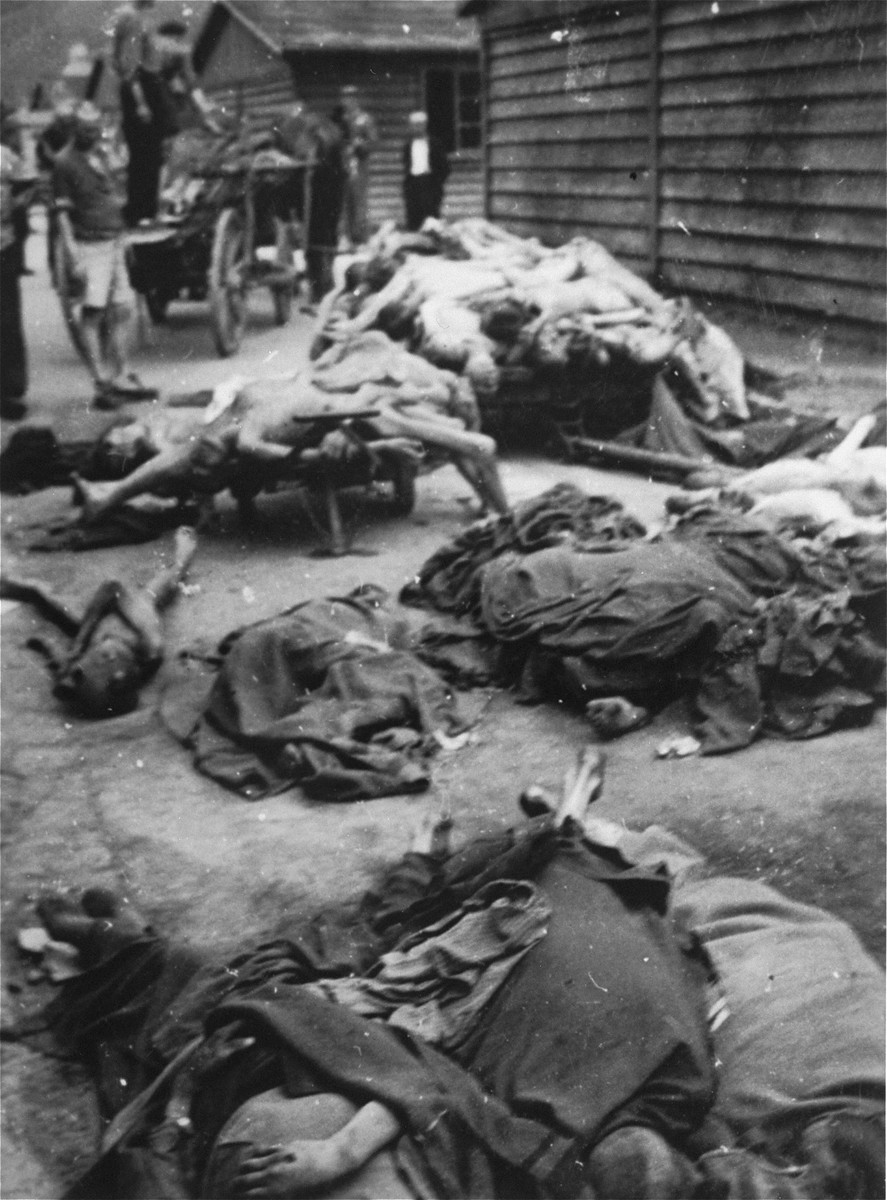 Survivors remove corpses from the grounds of the Gusen concentration camp.