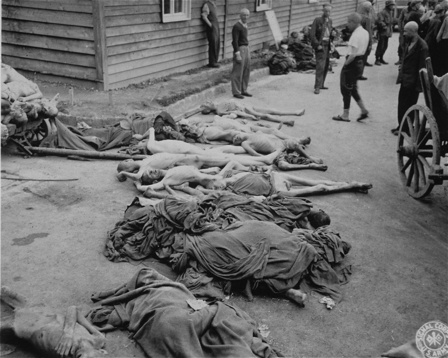 Survivors and piles of corpses in Gusen after liberation.