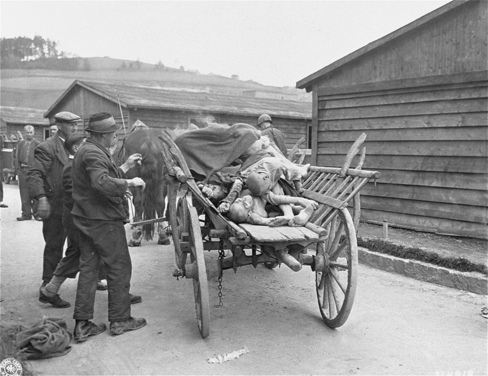 Austrian civilians load corpses onto a cart that will transport the bodies to a mass grave.