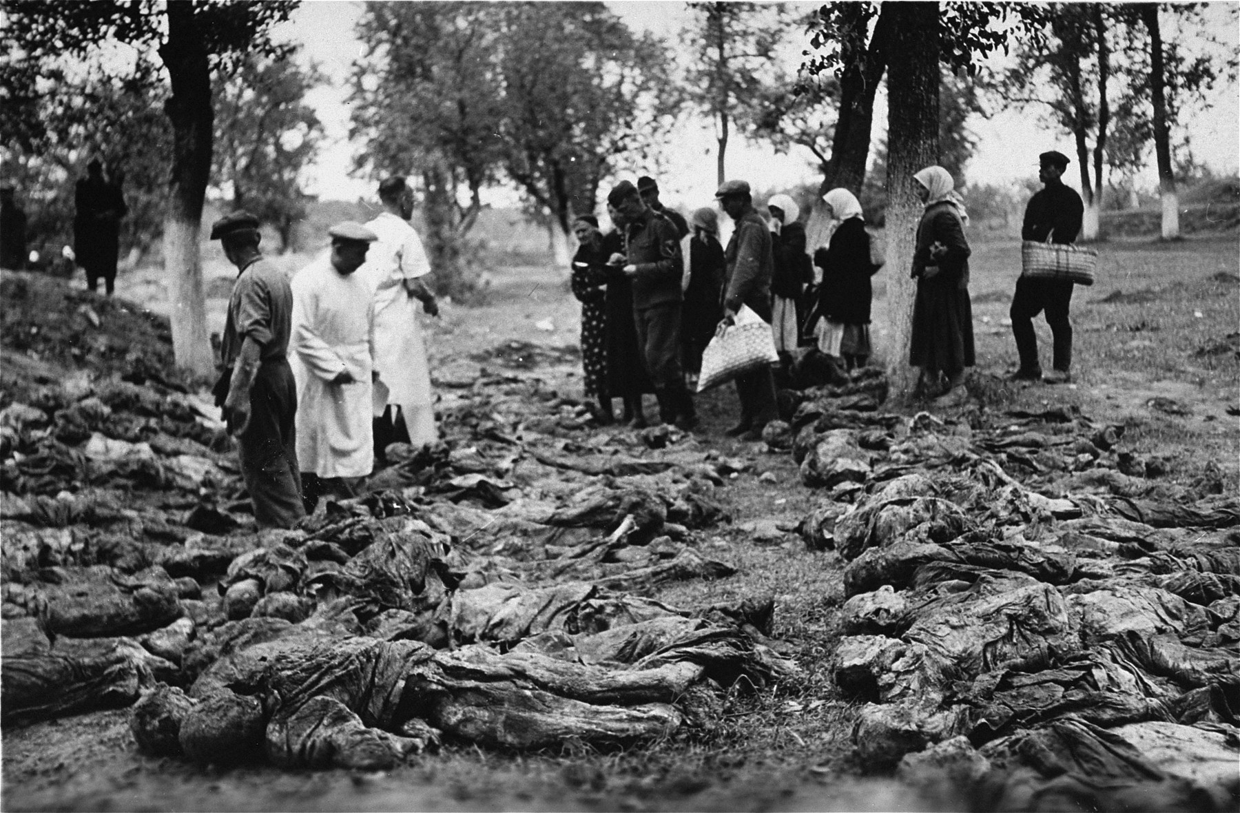 Austrian civilians, survivors, and medical personnel examine prisoners' corpses exhumed at Gunskirchen.