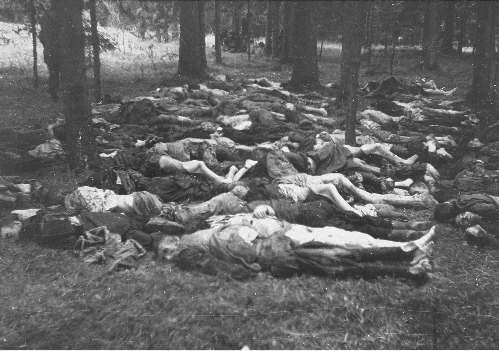 The bodies of executed prisoners in the Gunskirchen concentration camp.  American soldiers are visible through the trees at rear.