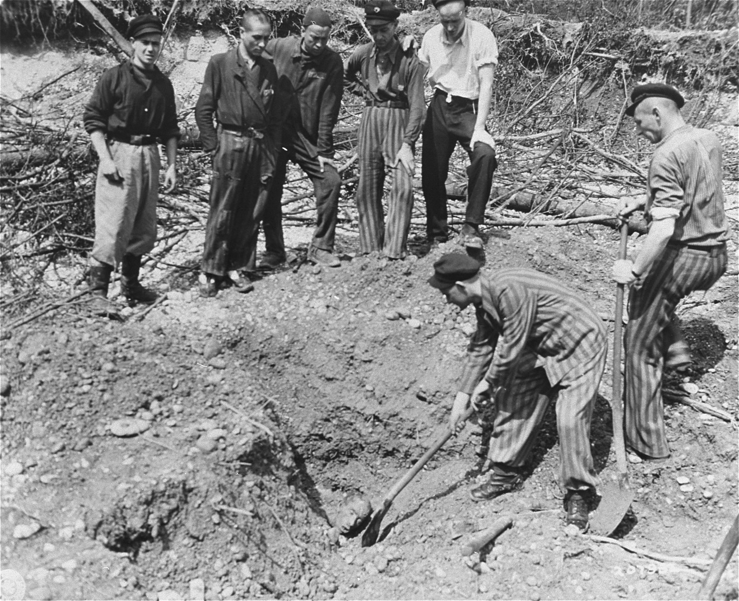 Survivors in the Linz concentration camp exhume bodies from a bomb crater.