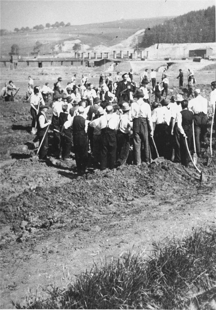Austrian civilians dig mass graves for the victims of the Gusen concentration camp, which is visible in the distance.
