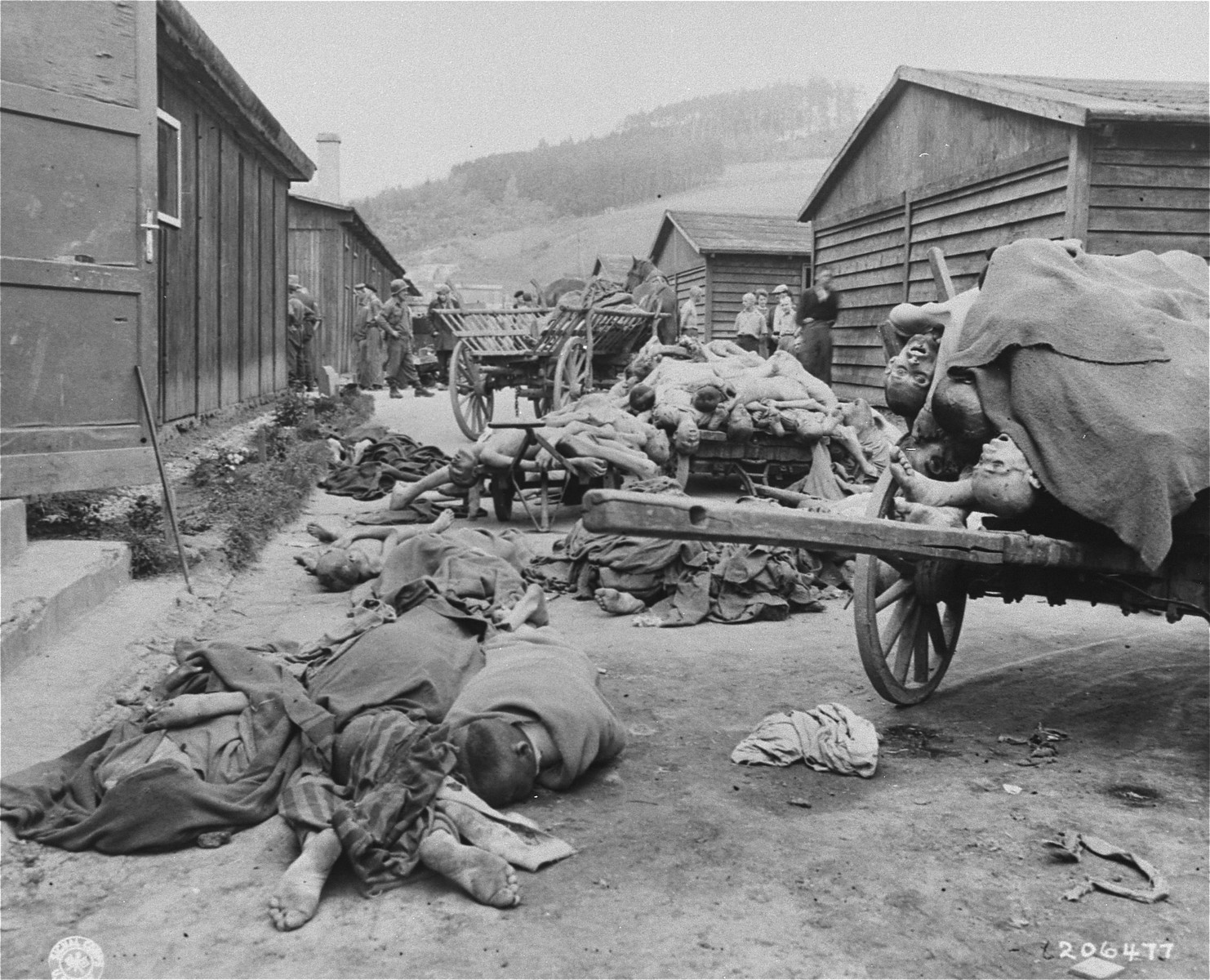 "Corpses in Gusen prior to their removal and burial by Austrian civilians.  The original Signal Corps caption reads,  ""GUSEN CONCENTRATION CAMP The Gusen concentration camp near Linz, Austria, was captured by troops of the 11th Armored Division, Third U.S. Army.  It was the scene of lingering death, hard work, bestiality and mass exterminations.  The total number of prisoners killed in Gusen, and the maximum number held in it, were facts not known at the time these photographs were taken May 12, 1945.  Even after the arrival of the American troops, the inmates continued to die from advanced starvation at the rate of 100 each day.  Inmates told investigators the camp was primarily for political prisoners from all over Europe.   Investigators have learned, however, that at one time an unknown number of American flyers were killed at Gusen.  The prisoners worked in nearby stone quarries until they were too weak to stand, then they were killed by the Germans. Gusen was equipped with a gas chamber, a crematory and those usual efficient means the Germans used for disposal of their murdered victims.  Third Army troops found dead bodies in filthy beds, garbage dumps, streets, carts, storage rooms and in refrigerated rooms where some were placed to await cremation.  German civilians were forced by the Americans to remove the decomposing bodies for decent burial.  BIPPA                                                         EA 66777  THIS PHOTO SHOWS:  Some of these men died in a gas chamber, some from starvation in bed.   The bodies were removed by German civilians and loaded into wagons for decent burial.  U.S. Signal Corps Photo ETO-HQ-45-46598. SERVICED BY LONDON OWI (INNER FULL) CERTIFIED AS PASSED BY SHAEF CENSOR"