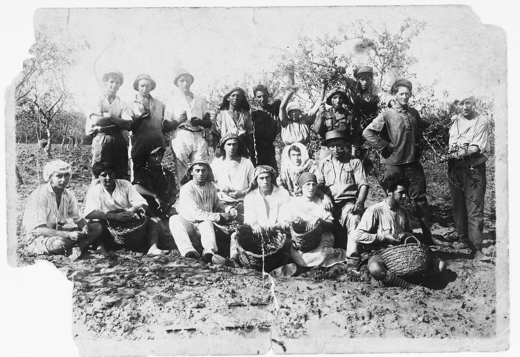 Group portrait of young Zionist pioneers in Palestine in a field with straw baskets.  Among those pictured is Mendel Abramowicz.