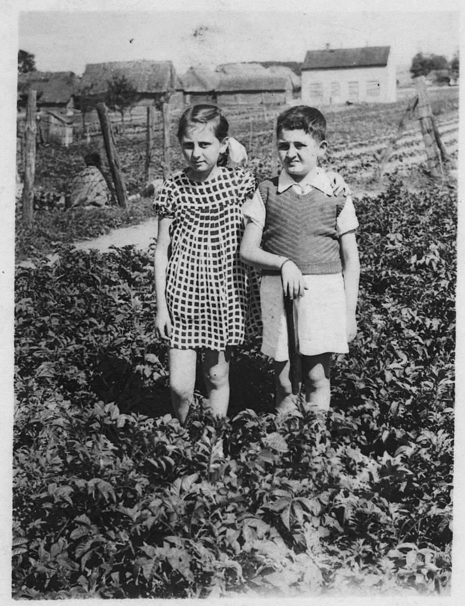 Rivke and Yitzhak Losice walk through through a field in a nearby farm.