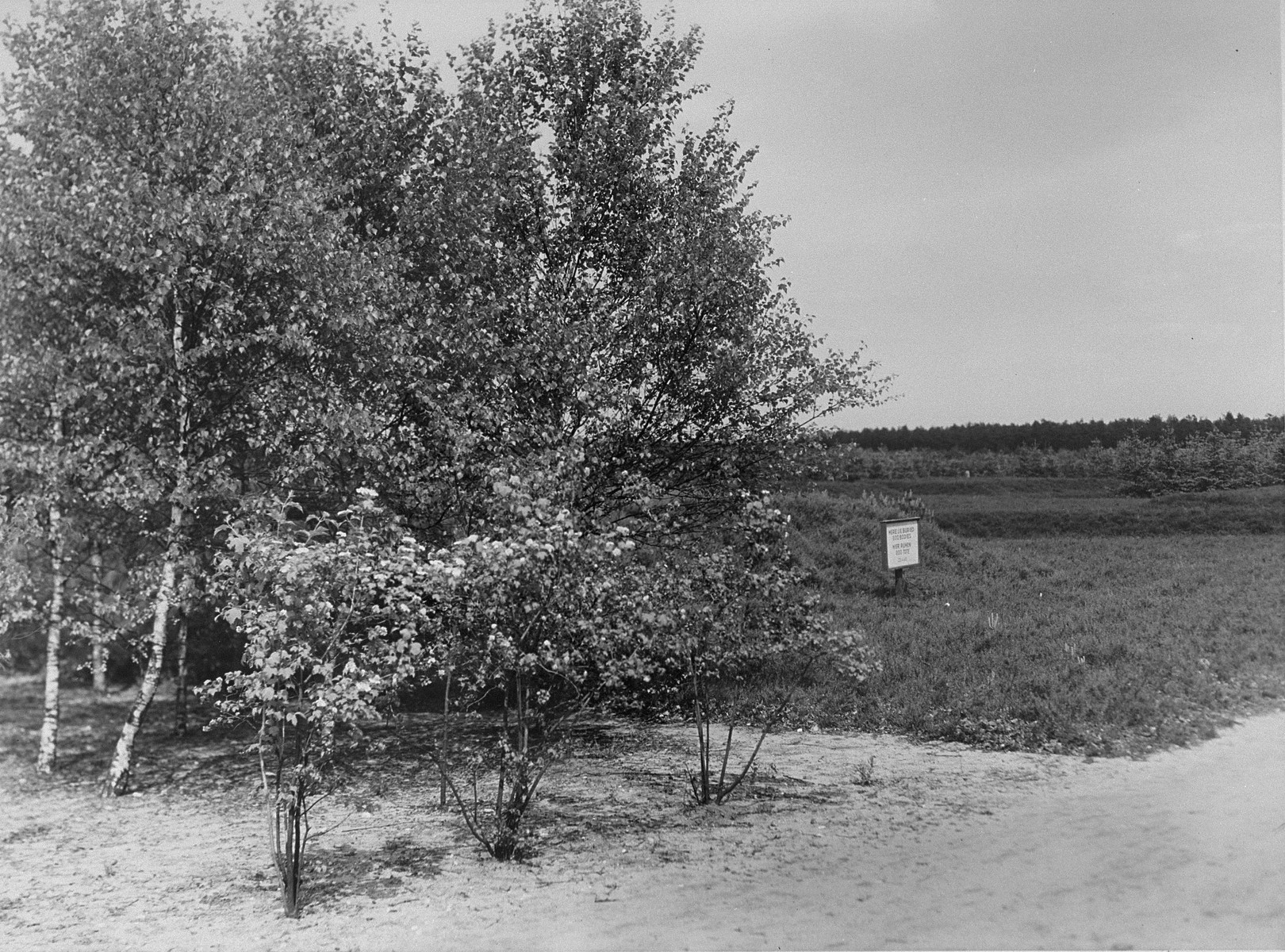 A sign marks a mass grave in the Bergen-Belsen concentration camp.