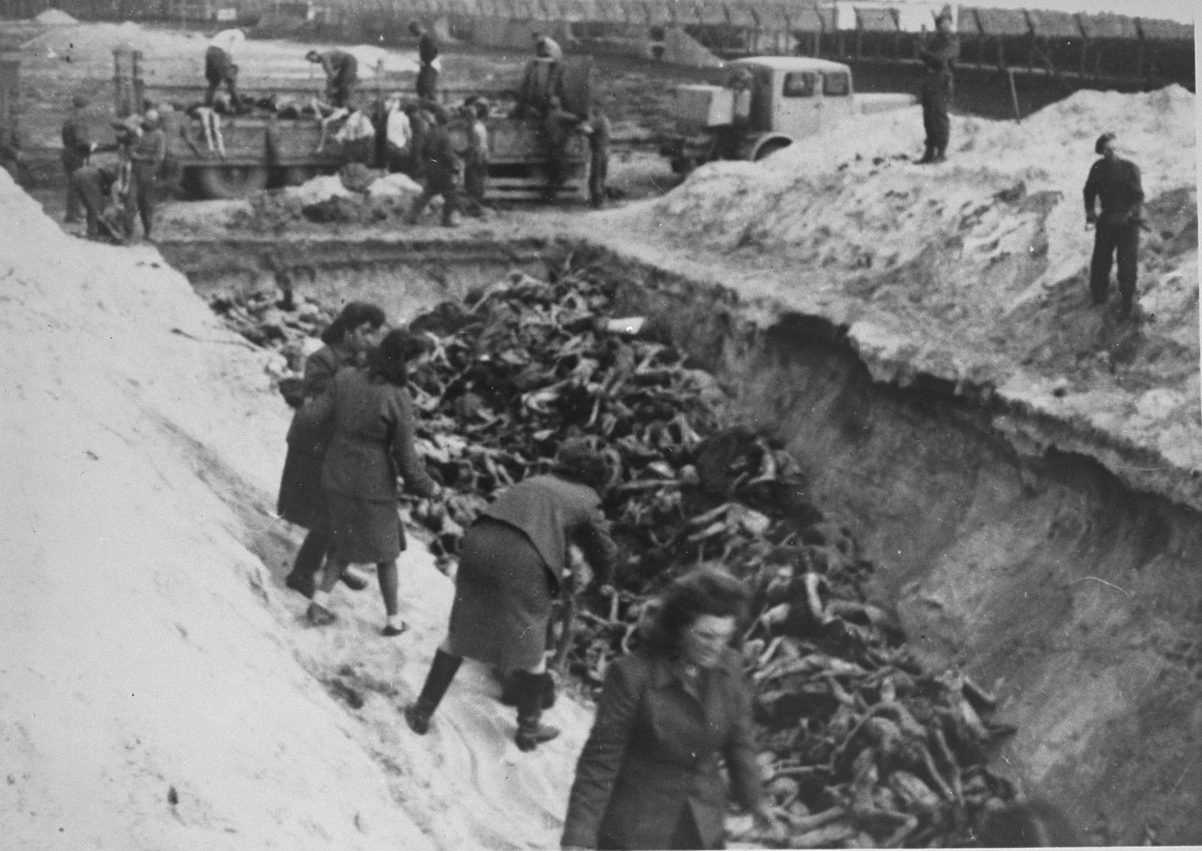 Former female camp personnel unload and bury prisoners' corpses in a mass grave.