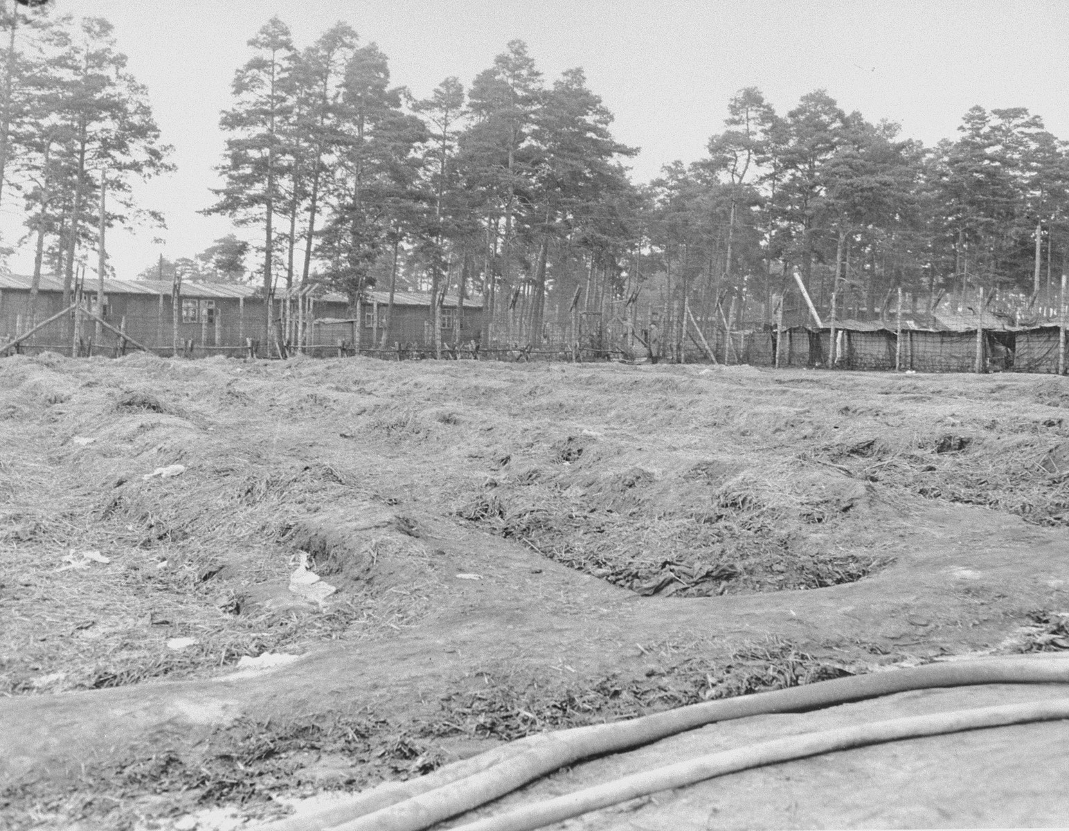 A section of Bergen-Belsen concentration camp that was once used as a potato field.  Prisoners caught stealing potatoes were severely punished.