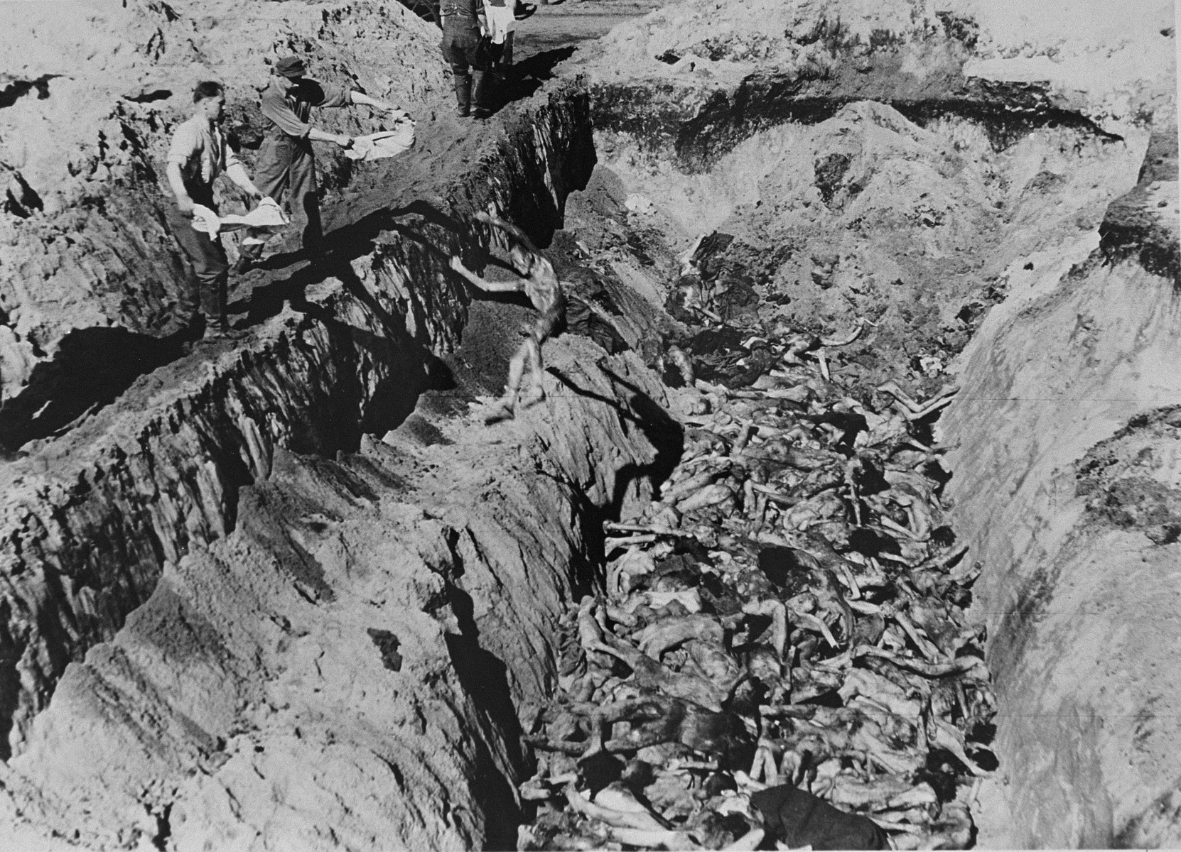 Former SS guards bury  corpses of prisoners in a mass grave in Bergen-Belsen concentration camp.