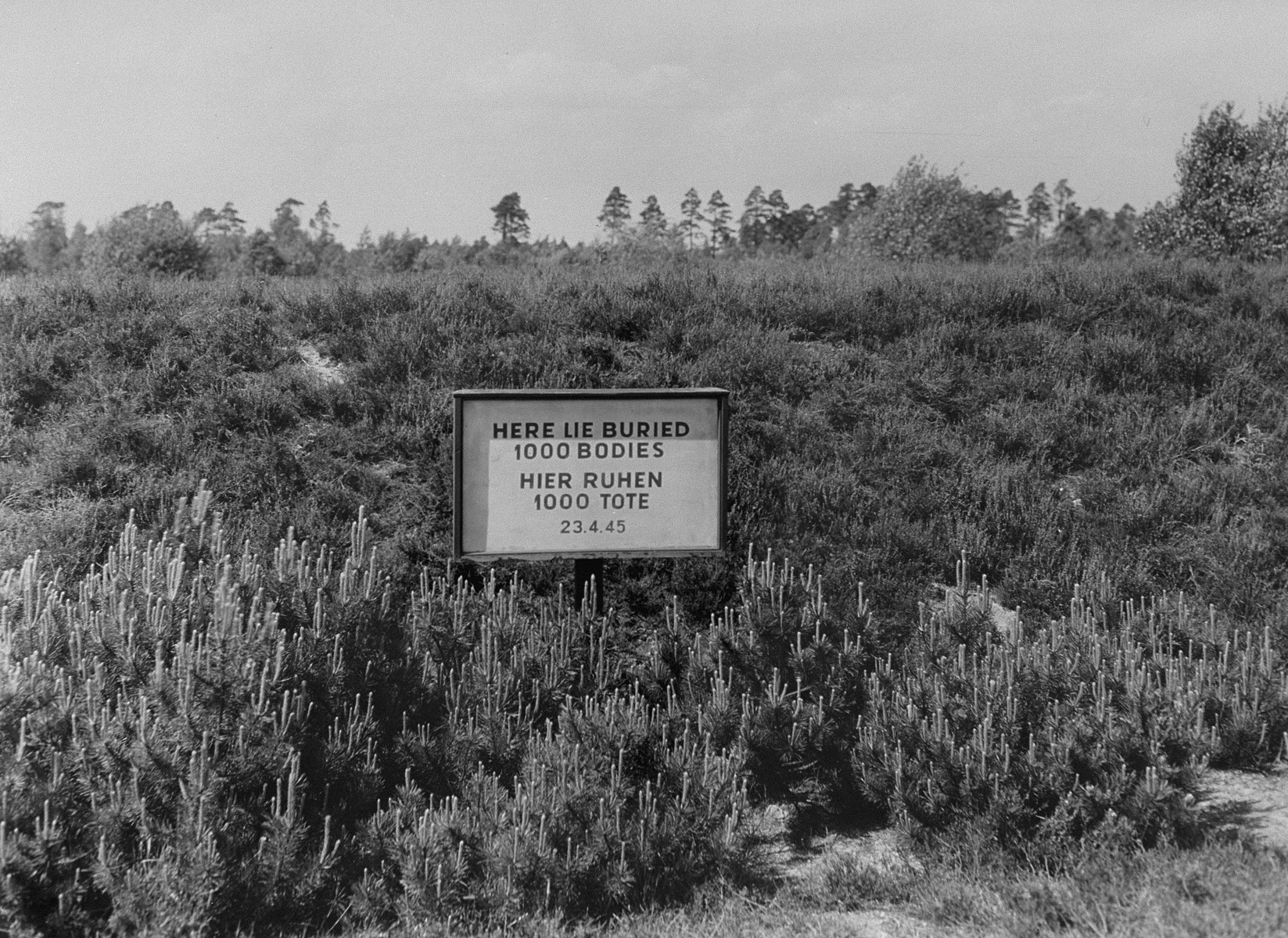 A sign marking a mass grave in Bergen-Belsen.