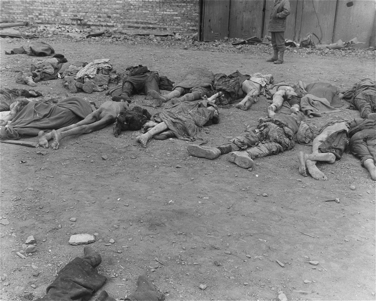 Corpses that were removed from the central barracks (Boelke Kaserne) lie on the grounds of the Nordhausen concentration camp.