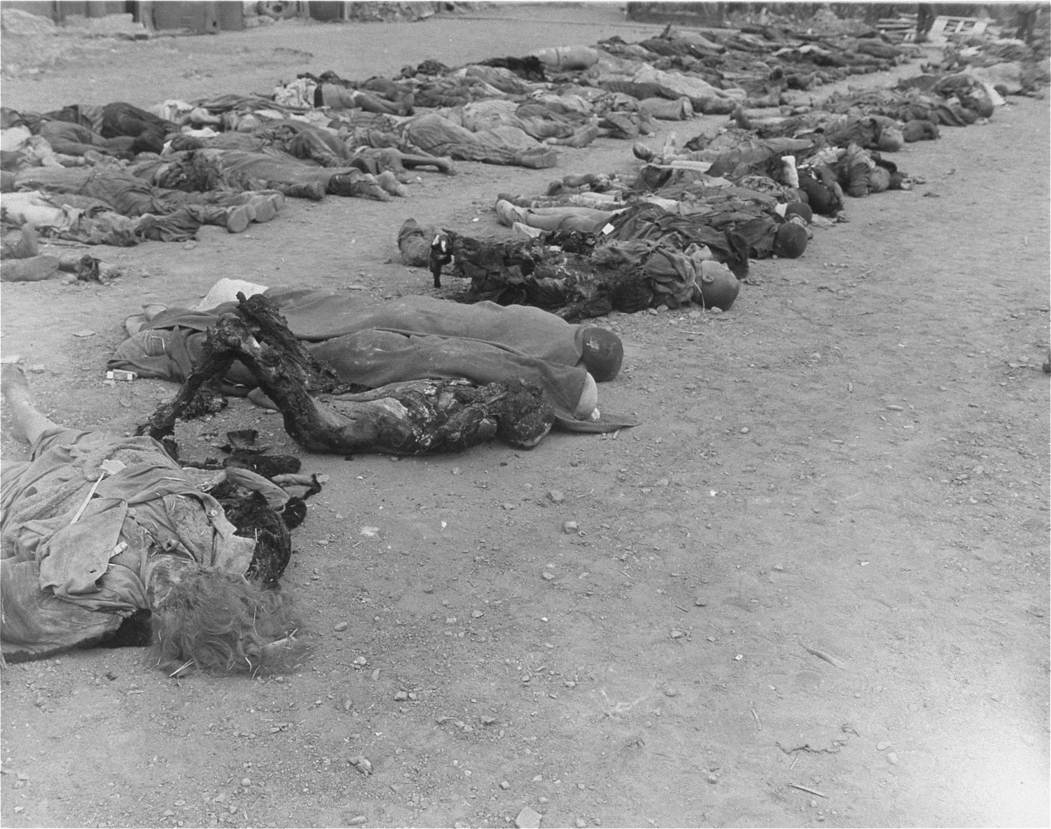 Corpses that were removed from the central barracks (Boelke Kaserne) lie in rows on the grounds of the Nordhausen concentration camp.