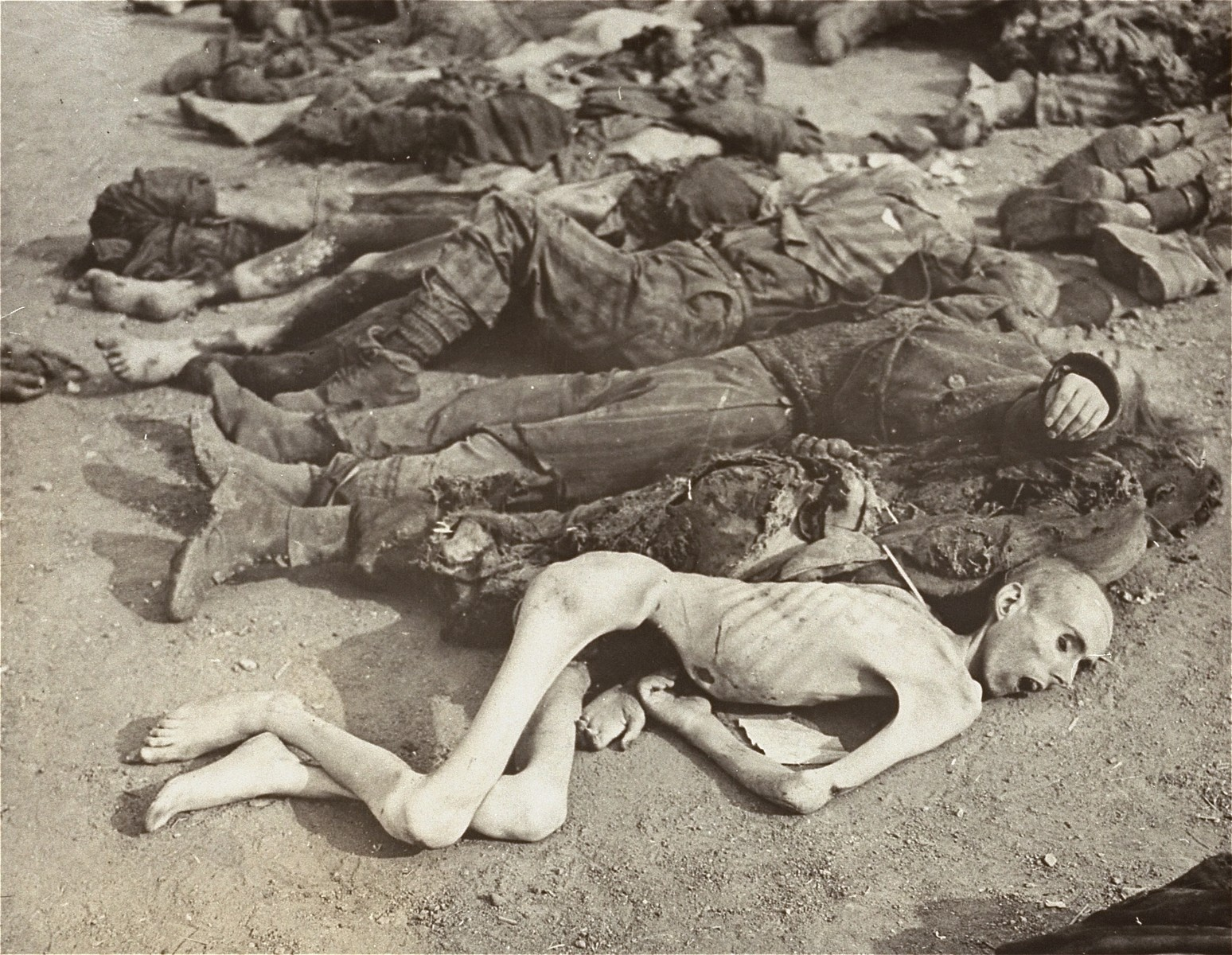 The corpses of prisoners laid out for mass burial in the Nordhausen concentration camp.