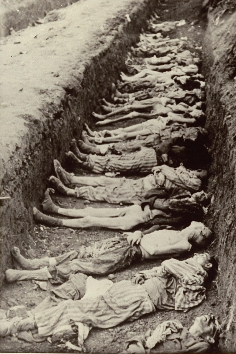 Prisoners' corpses lie in a mass grave dug by German civilians from the town of Nordhausen.