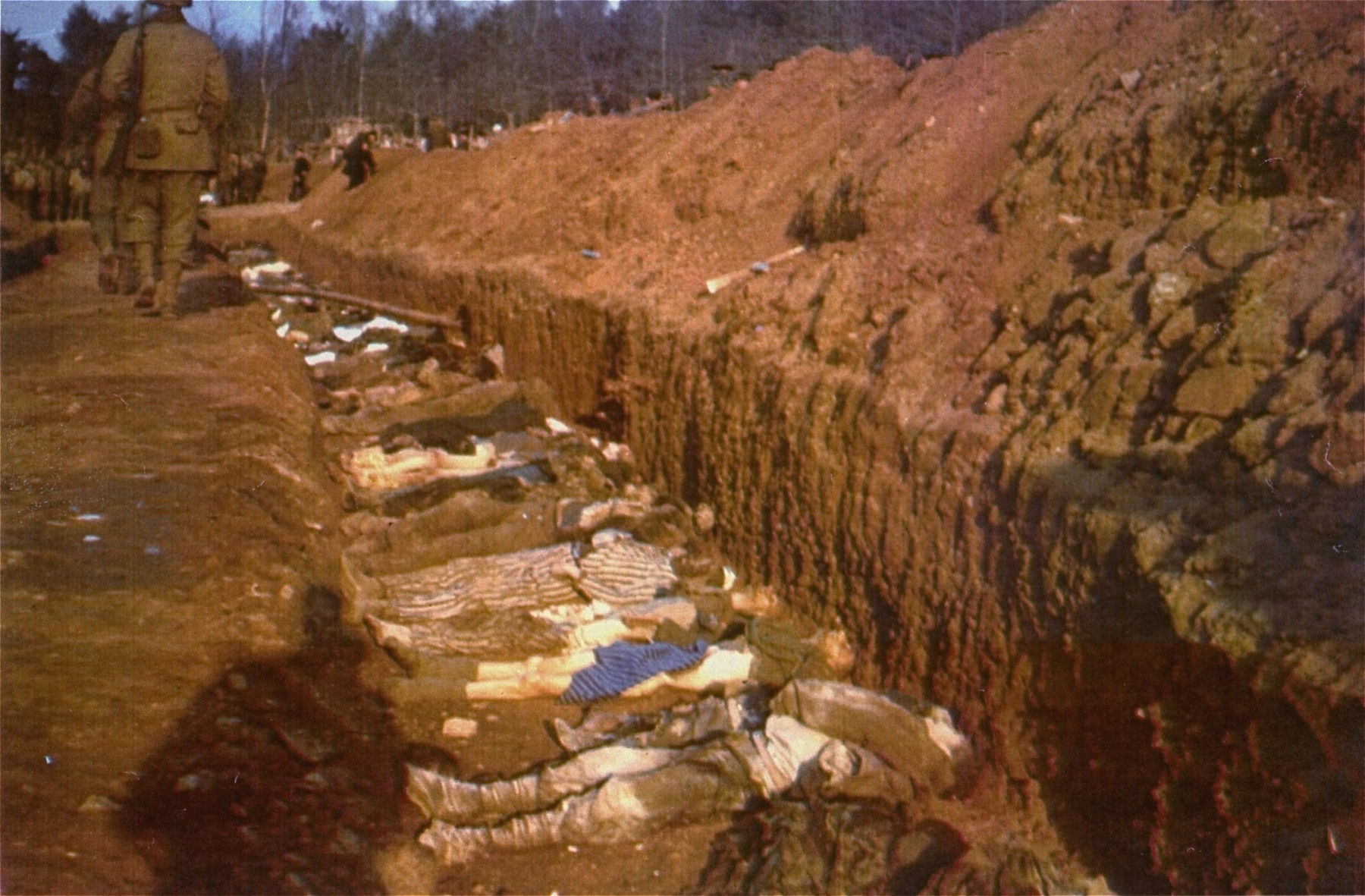 The bodies of prisoners killed in the Nordhausen concentration camp lie in a mass grave dug by German civilians under orders from American troops.