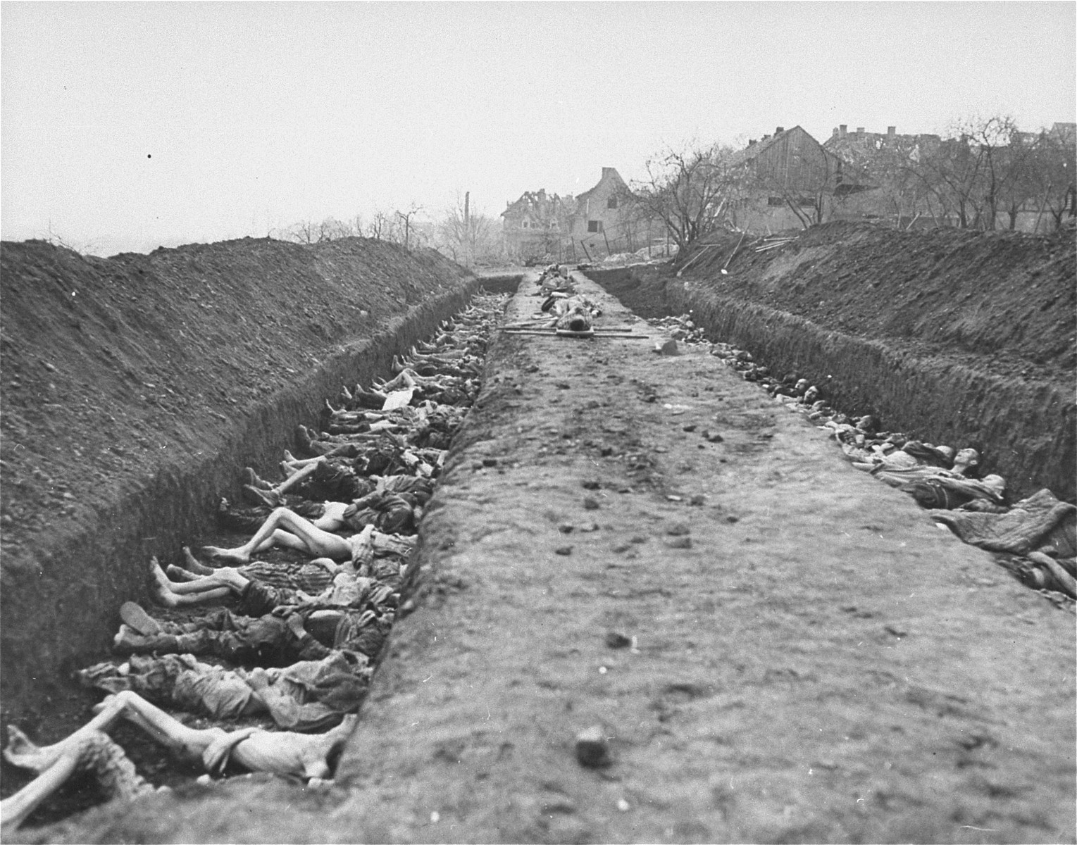 "The bodies of prisoners killed in the Nordhausen concentration camp lie in mass graves dug by German civilians under orders from American troops.  The original Signal Corps caption reads, ""U.S. TROOPS OVERRUN NAZI SLAUGHTER HOUSE.  The bodies of hundreds of former slave workers of the Nazis were discovered by soldiers of the Third Armored and 104th Infantry Divisions First U.S. Army, in ""Lager-Nordhausen,"" Nazi concentration camp in Nordhausen, Germany, which usually contained between 3,000 and 4,000 prisoners. The dead lay beside the sick and dying and the Nazi camp masters made no attempt to check the contagious diseases and gangrene suffered by maltreated prisoners of many nationalities.  The bodies, which were no more than skeletons, were buried by German civilians who were also forced to dig mass graves.  The few prisoners still alive, who had been beaten, maltreated in other ways and starved by the Nazis, have been removed to allied hospitals.  Troops of the First U.S. Army entered Nordhausen April 10, 1945.  The Reich city, 120 miles southwest of Berlin, was a manufacturing center for Nazi V-weapons.  BIPPA                                                         EA 52449  THIS PHOTO SHOWS:  Bodies on stretchers line a strip between the mass graves which are filled with the skeleton-like corpses of the former slaves to the Nazi  war machine.  The victims await burial by German civilians.  U.S. Signal Corps Photo ETO-HQ-45-32214.   SERVICED BY LONDON OWI TO LIST B CERTIFIED AS PASSED BY SHAEF CENSOR"