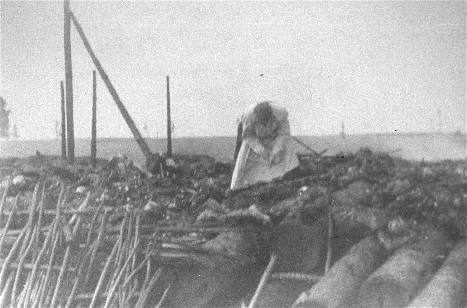 A member of a Soviet investigating team views the remains of Jewish victims burned in a barn by the Germans near the Maly Trostinets concentration camp.