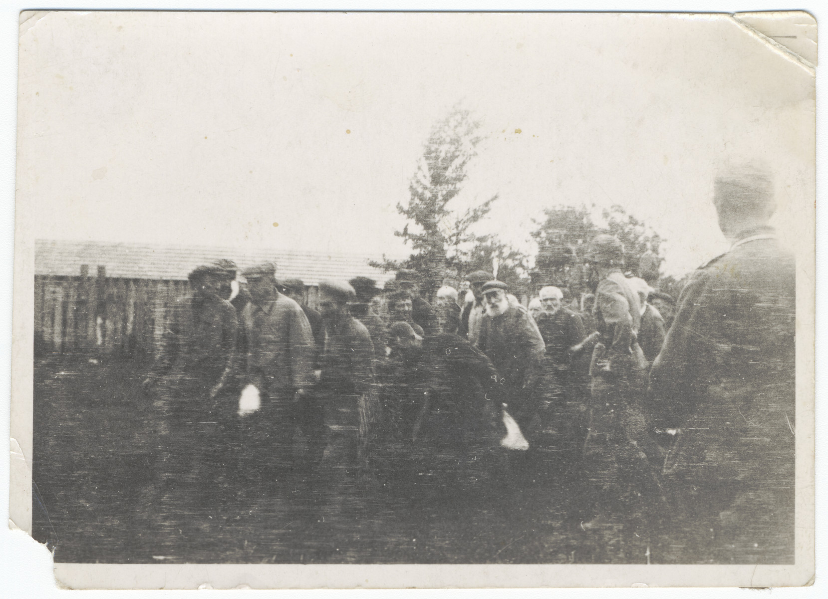 """Jewish men from Zhitomir are brought to a cemetery where they would be shot by German troops.  The original caption reads """"We had to look as they were shot by ourselves""""."""