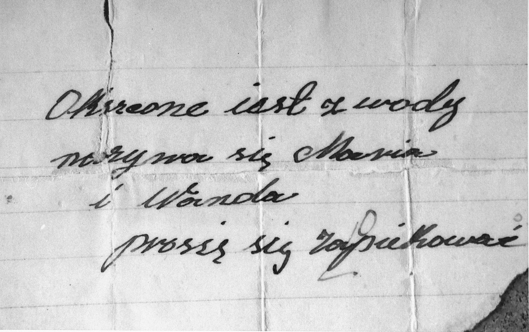 A note written by a Christian woman (Maria Dawelec) who saved Tammy Lavee by placing her, at age two and a half, along with this note and a cross, in the backyard of a monastery.   Tammy was later taken to an orphanage in Lodz by the Coordination Committee. The note reads: Baptized, Mania and Wanda. Please take care of them.