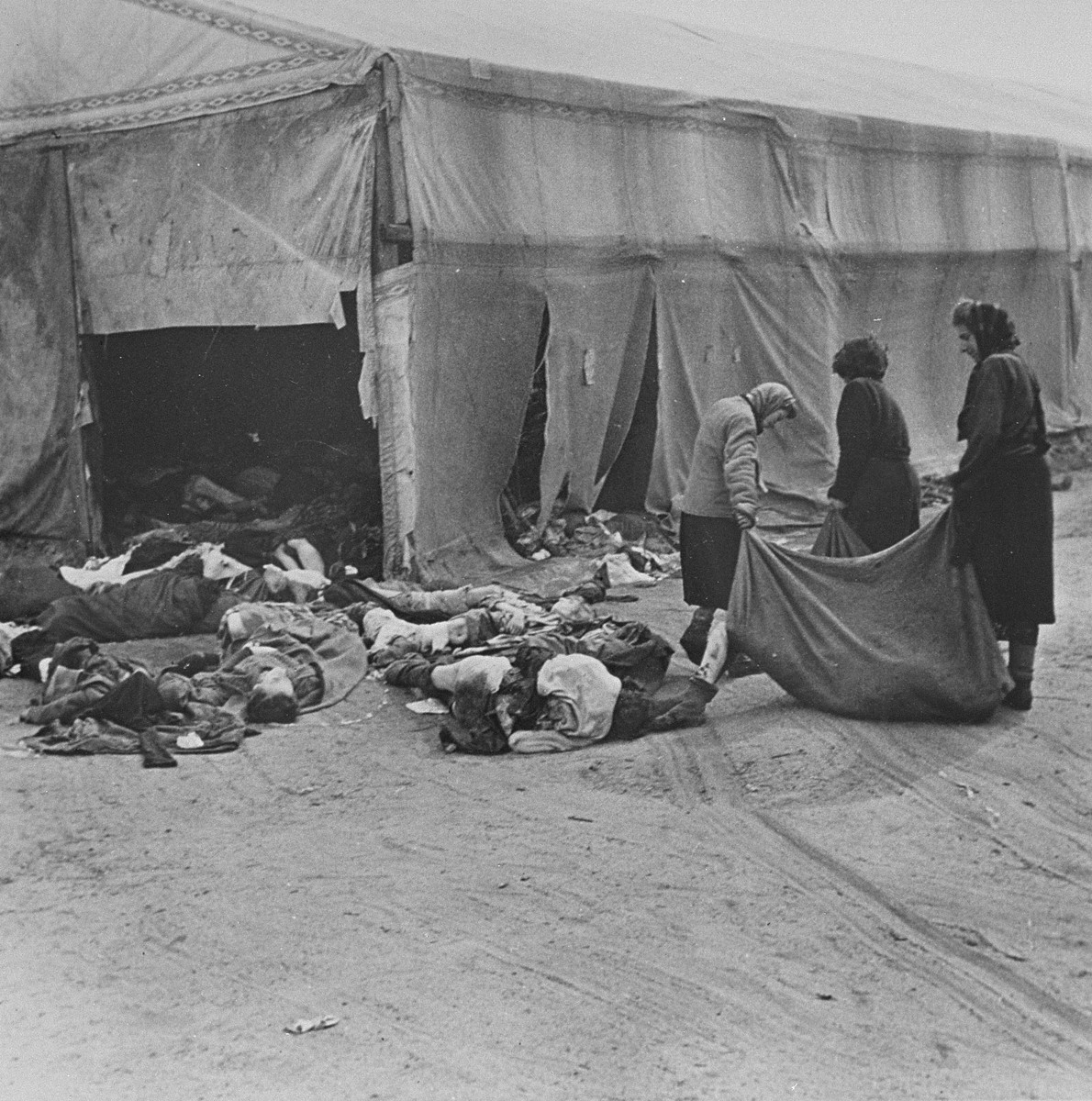 Female survivors in Bergen-Belsen remove corpses for burial.