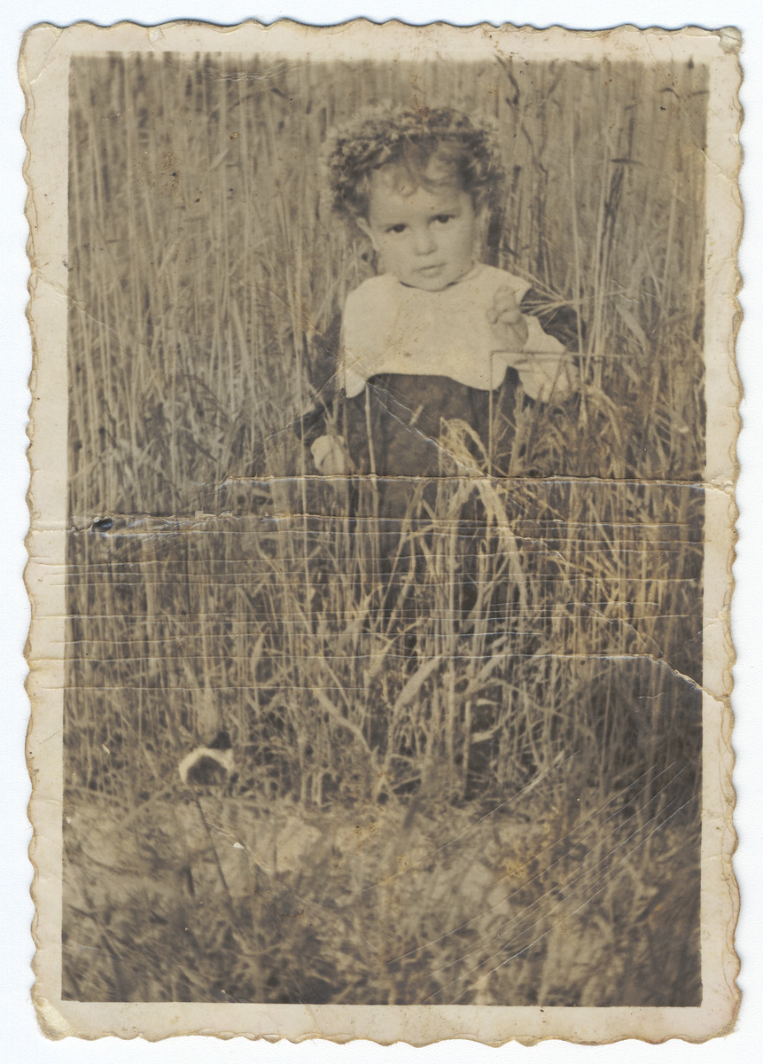 A young Jewish girl in hiding with dyed blond hair walks in a field of tall grass.  Pictured is Krystyna Lindenbaum.