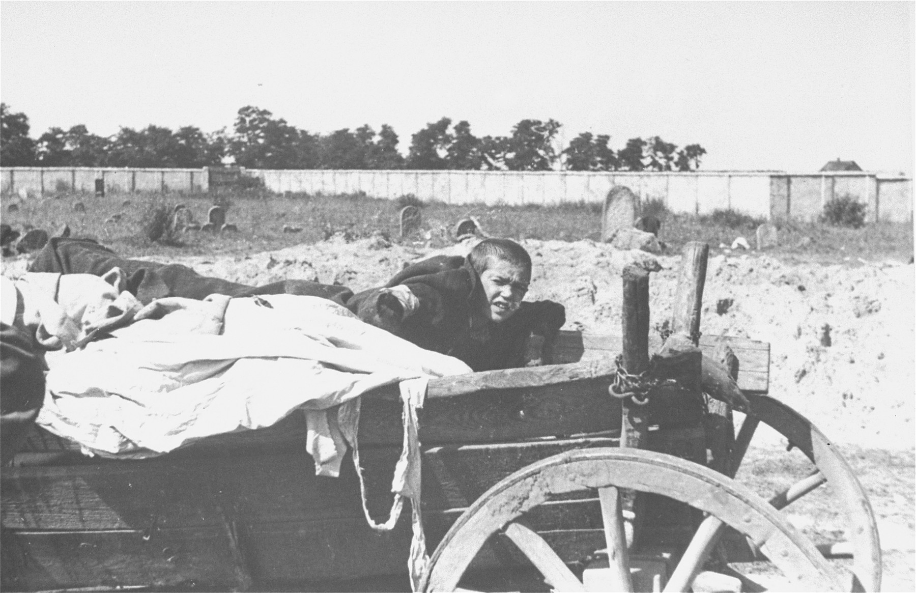 A Jewish boy wearing an armband wakes up in a cart full of corpses that is being transferred from the Siedlce ghetto hospital to the Jewish cemetery for burial.    The boy was subsequently shot and buried with the corpses.  This incident was witnessed and photographed by Tadeusz Castelli.