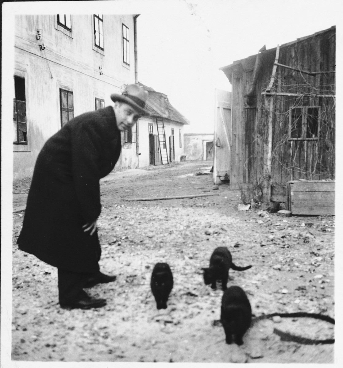 Ernest Kovacs (uncle of the donor) stands nexts to a group of cats on a street in Galanta.