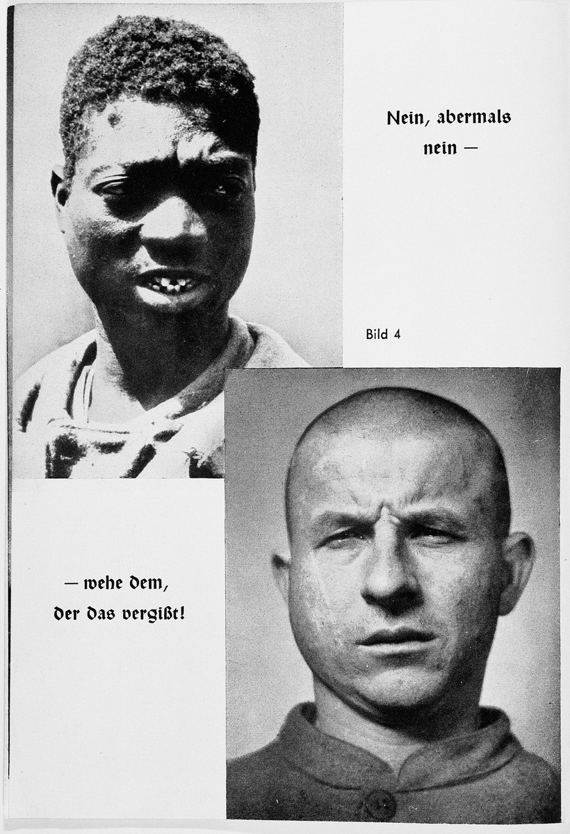 """Two Nazi propaganda racial portraits of non-Aryans; the top portrait is of an African.  The caption reads: """"No, not again  -- woe to he that forgets!"""""""