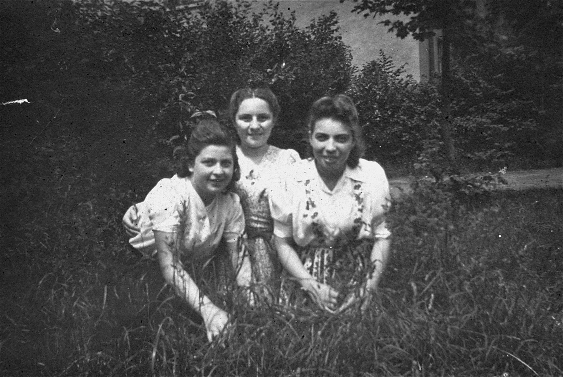 Three teenage girls pose in the grass at the Bergen-Belsen displaced persons camp.    Pictured on the left is Rozia Merin.