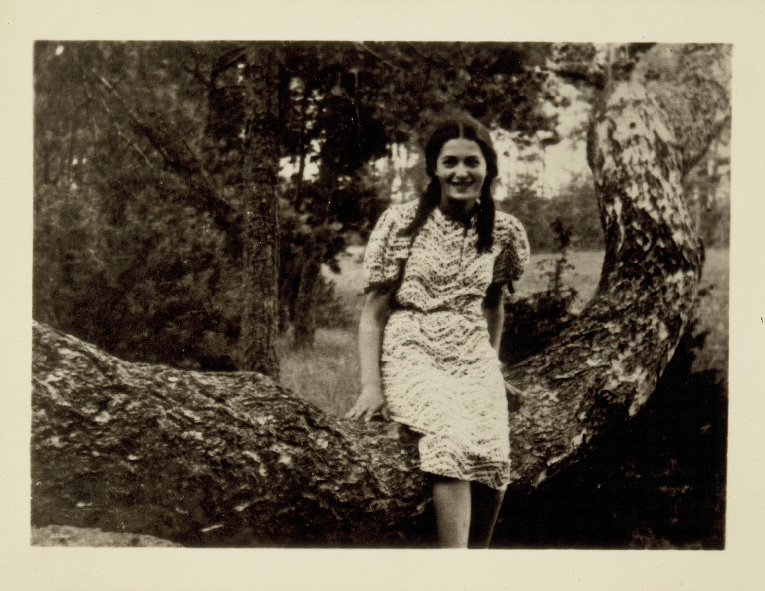 A Jewish teenage girl poses sitting on the branch of a tree in the Seklutski Forest near Eisiskes.  Pictured is Sarah Bastunski, the daughter of Shmuel and Rivka Bastunski.  Sarah was killed by the Germans during the September 1941 mass shooting action in Eisiskes.