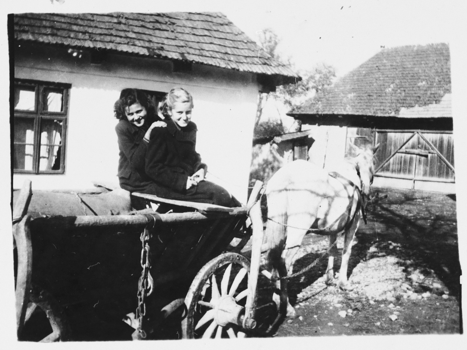 Two Jewish teenagers pose in a horse-drawn wagon in Bilki.  Pictured are Magdalena Mermelstein (left) with her friend, Alice Steinberger (right), outside Magdalena's grandparents' home.