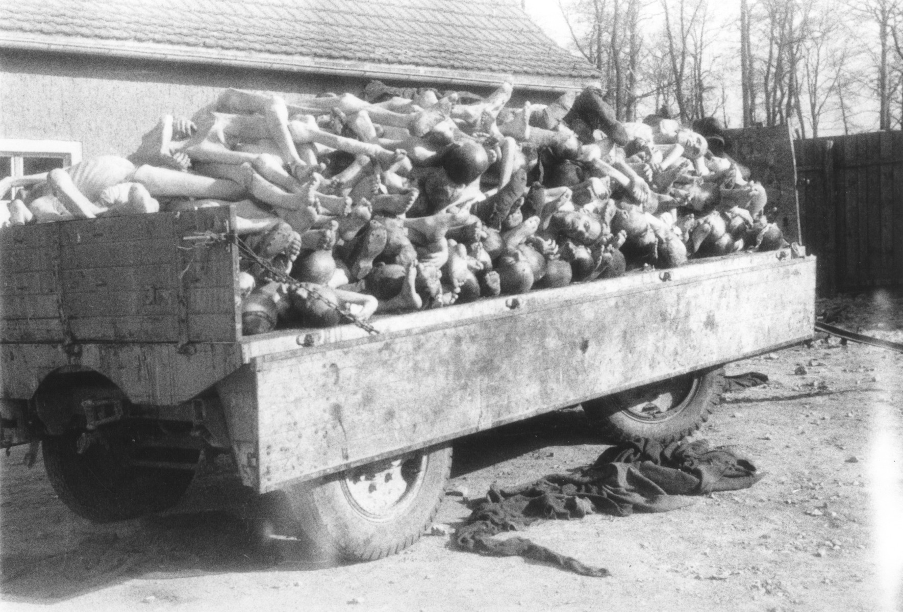 View of a wagon piled high with corpses outside the crematoria in the Buchenwald concentration camp.