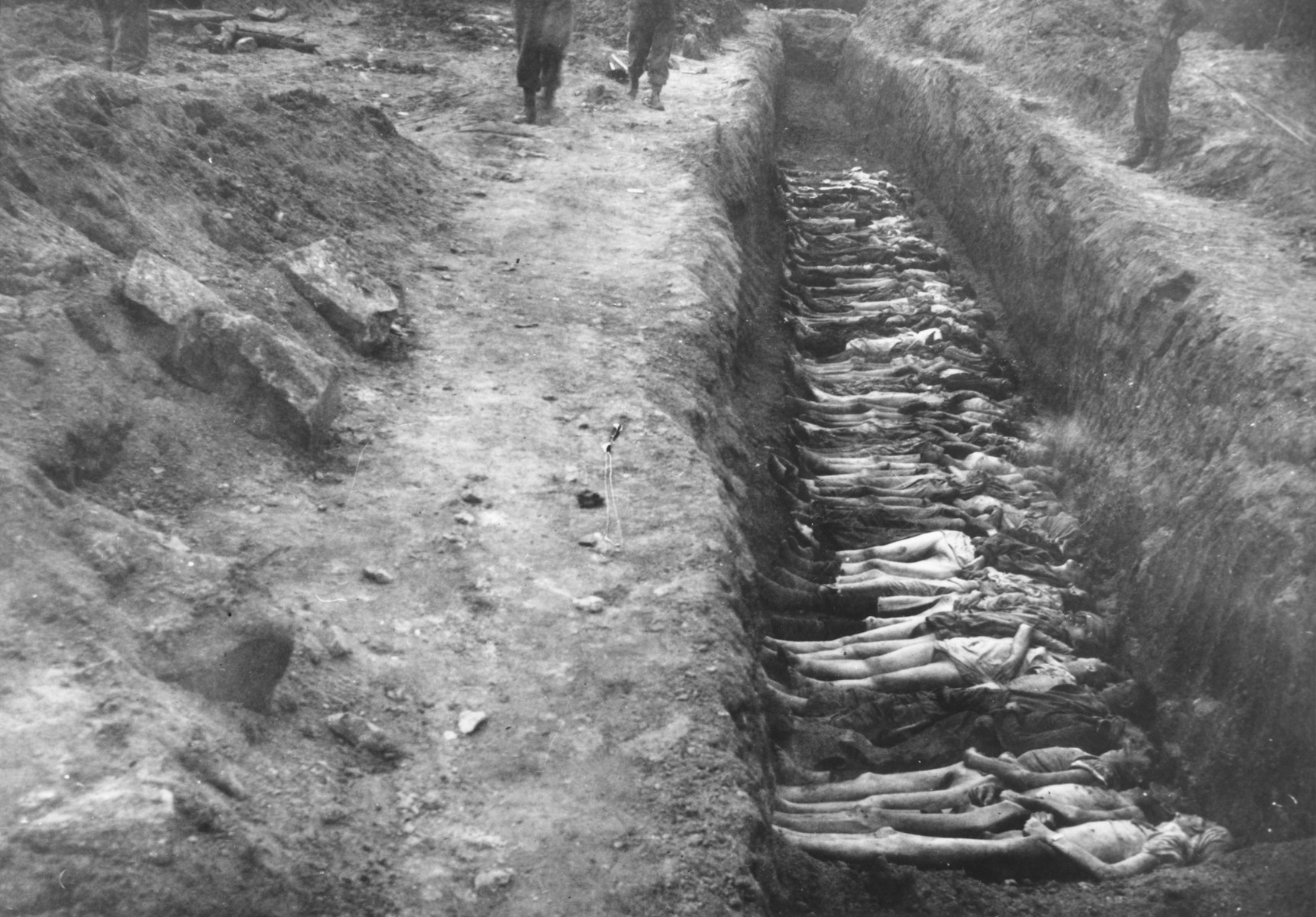 Prisoners' bodies laid out in a mass grave.