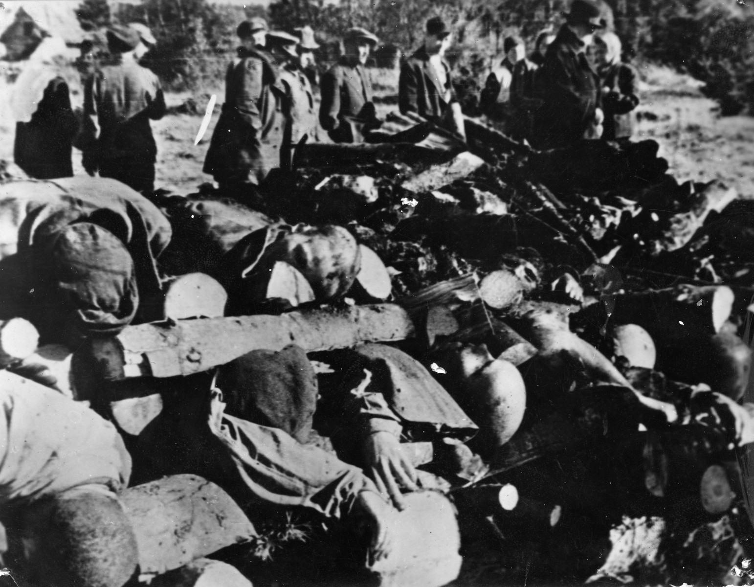 Members of a Soviet war crimes investigation commission view the bodies of slain prisoners which have been stacked for burning.