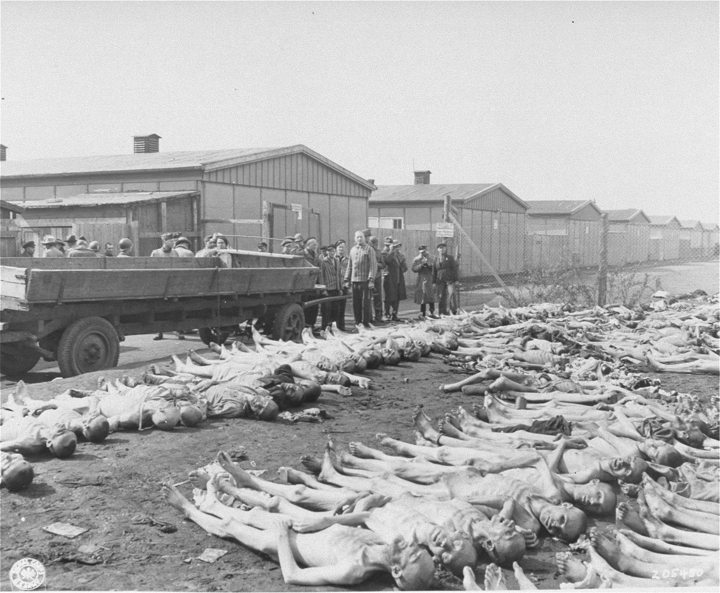 Visiting American newspaper and magazine correspondents view rows of corpses in Dachau during an inspection of the camp.