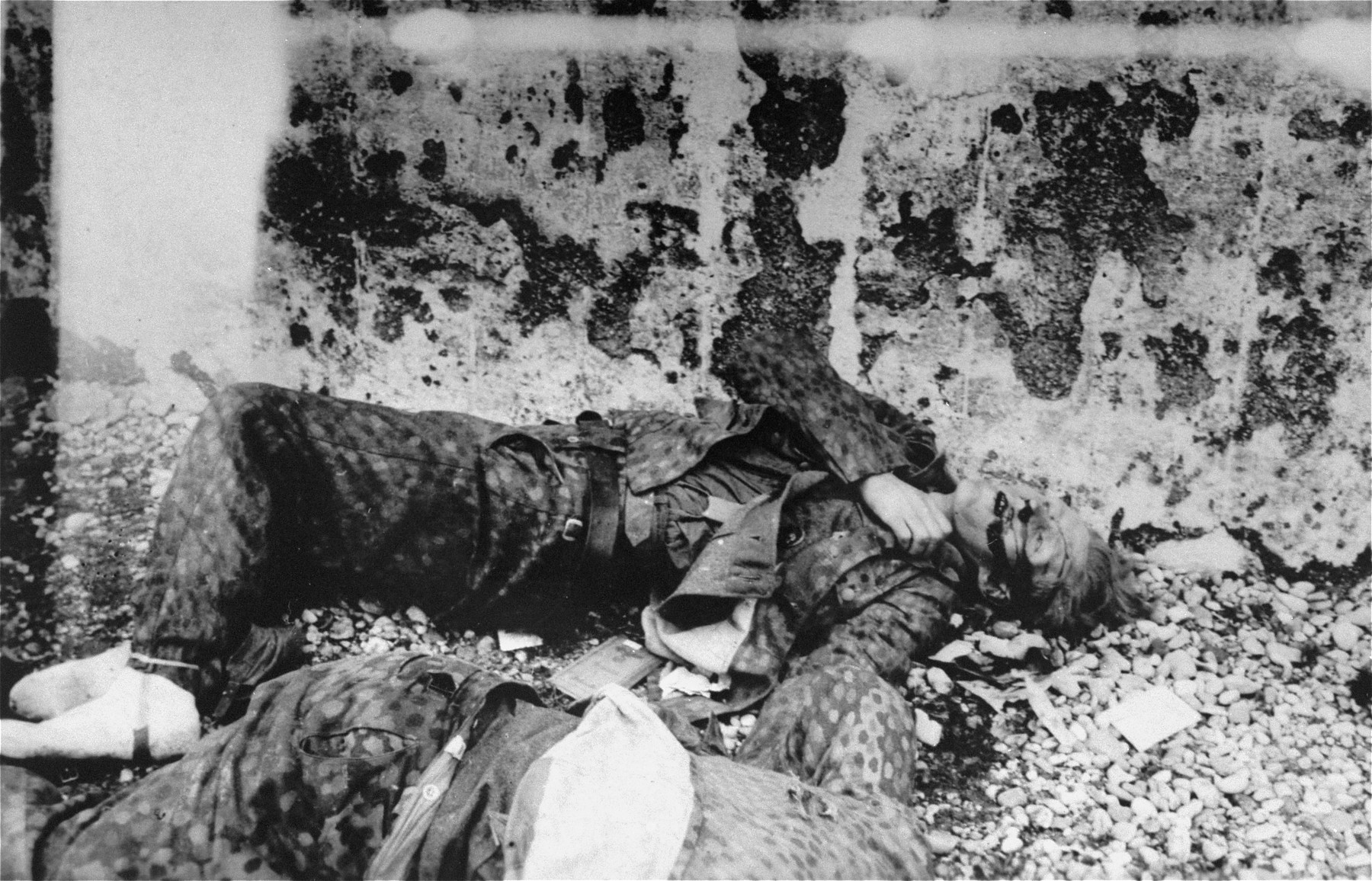 The corpse of an SS guard who was summarily executed in Dachau by U.S. troops.