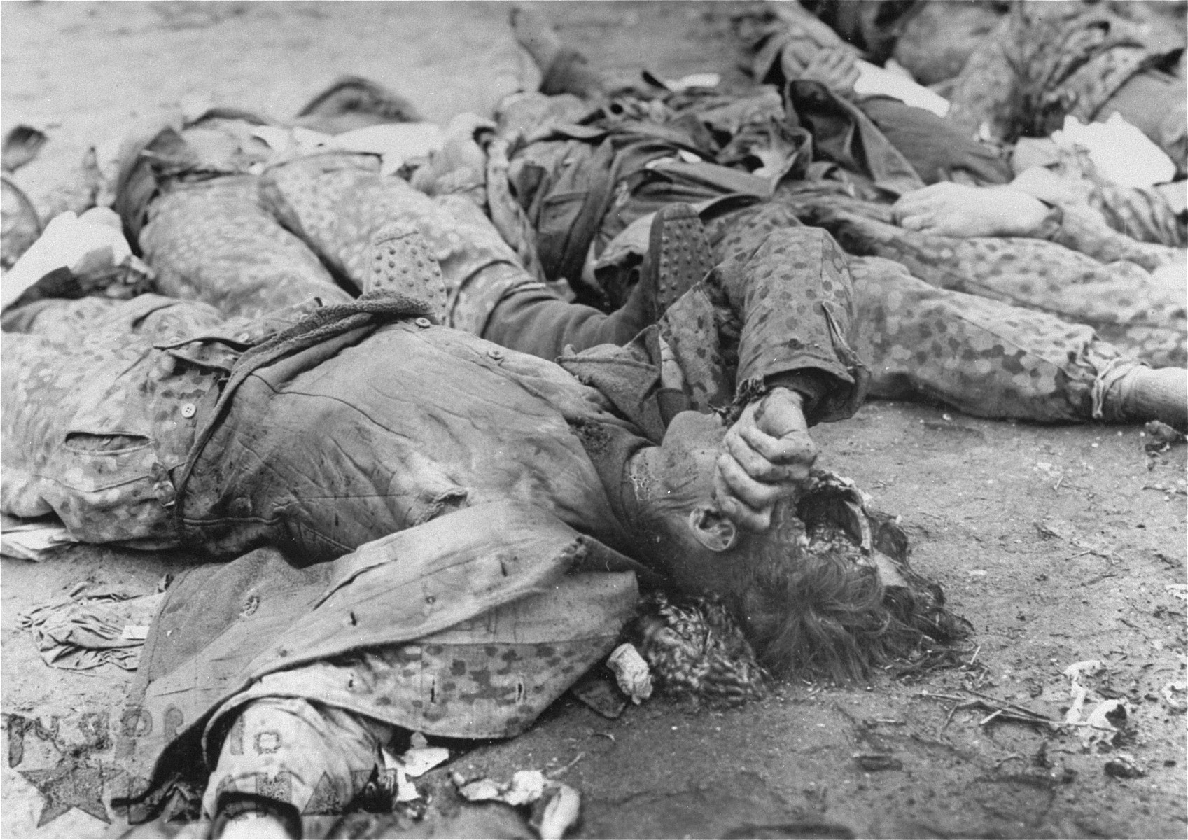 The bodies of SS guards who were summarily executed by U.S. troops.