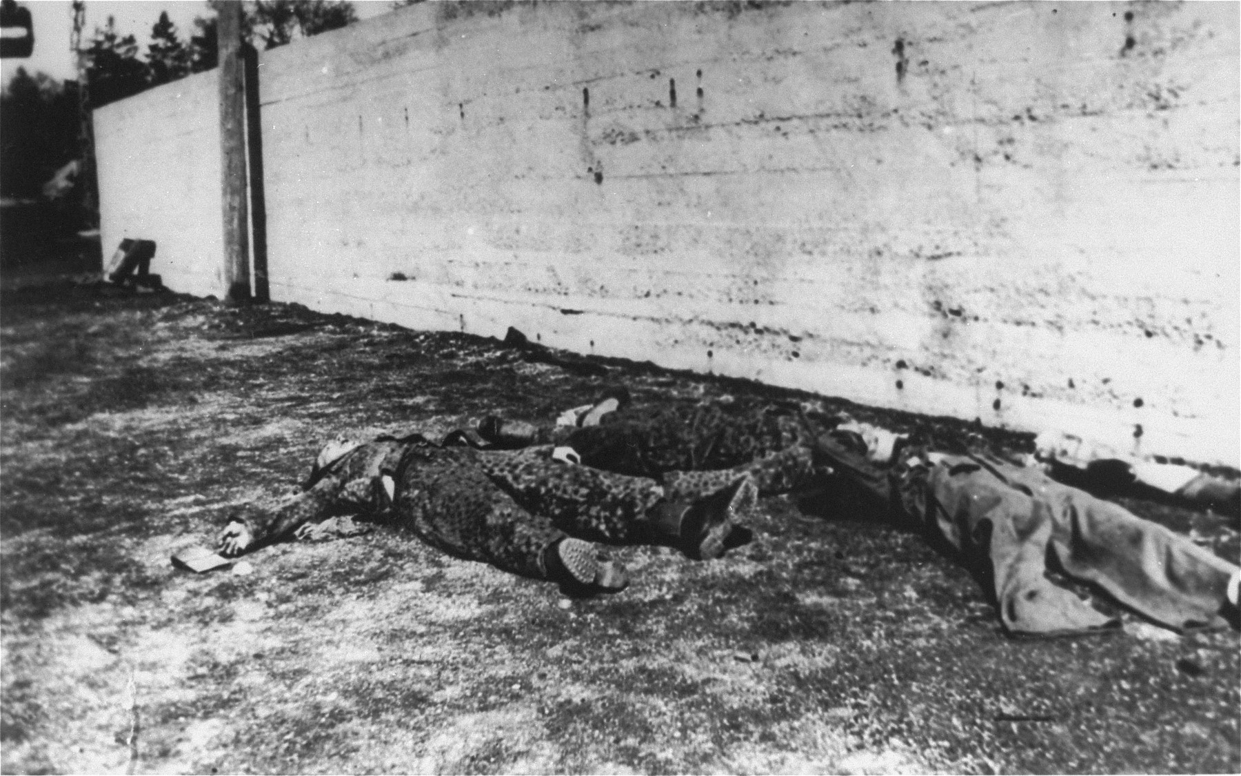 The bodies of executed SS guards.