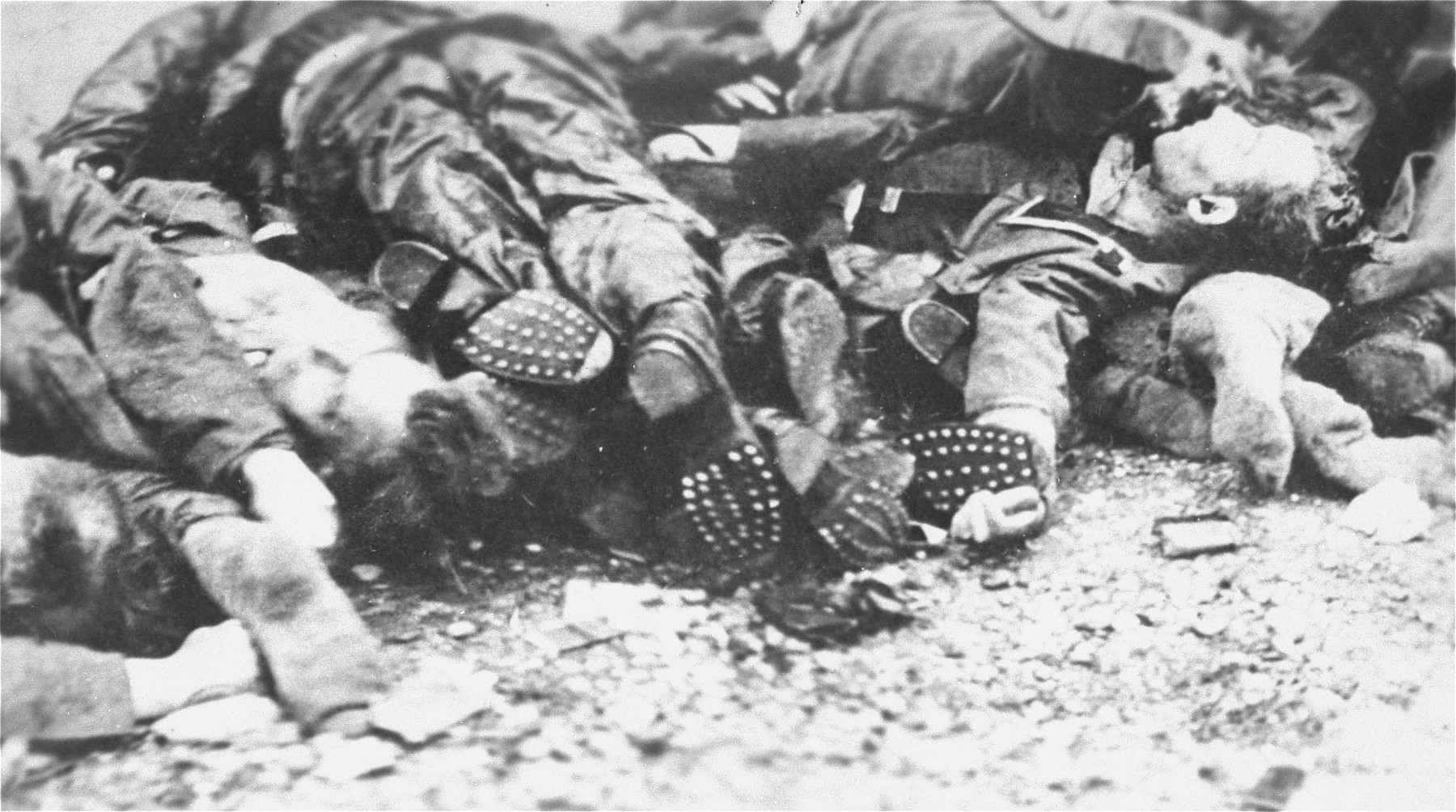 SS guards executed by American troops during the liberation of the camp.