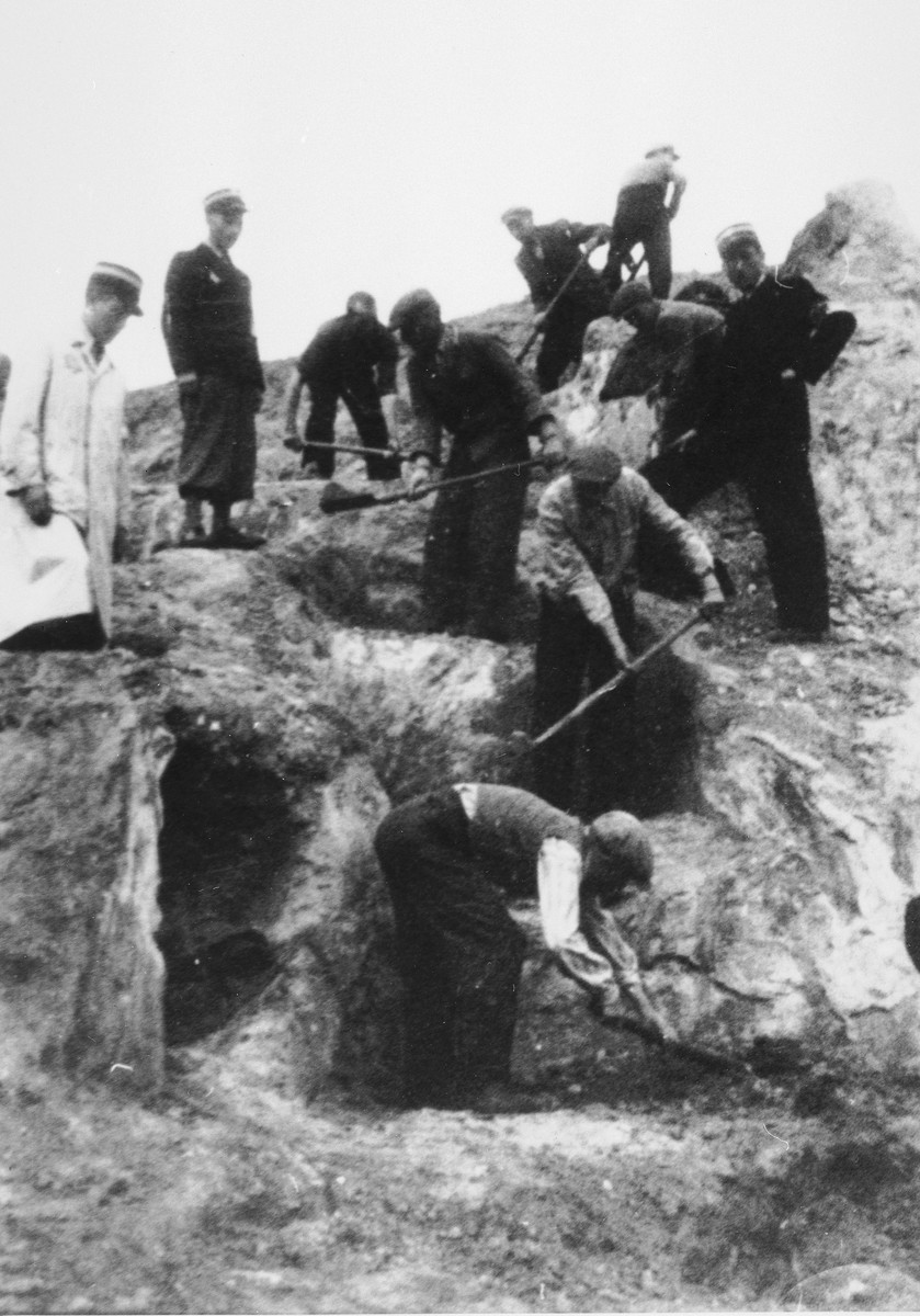 Jews dig trenches in the Lodz ghetto supervised by members of the Jewish police.