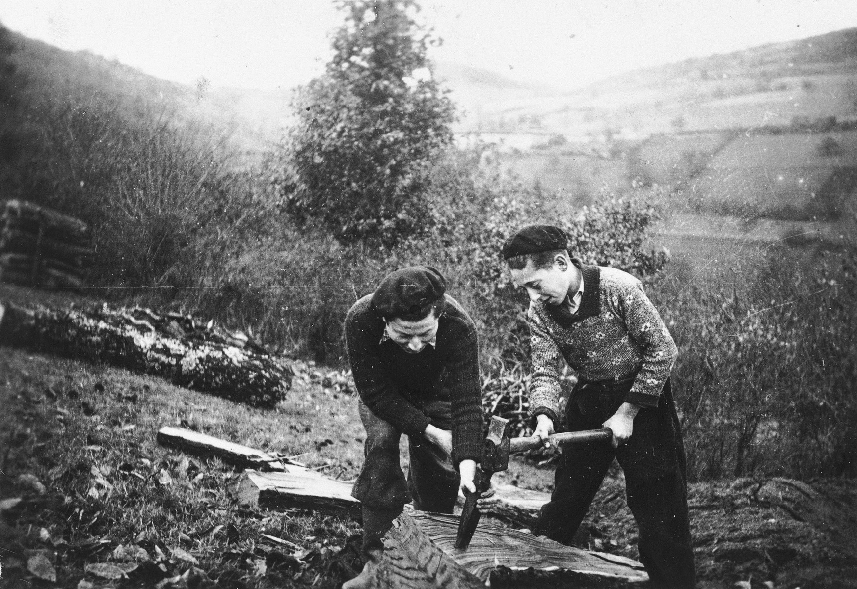 Two Jewish youths chop wood while living in hiding on a farm in Taluyers.  Alfred Bohem (left) survived and lives in Strassbourg and Robert Loeb is on the right.