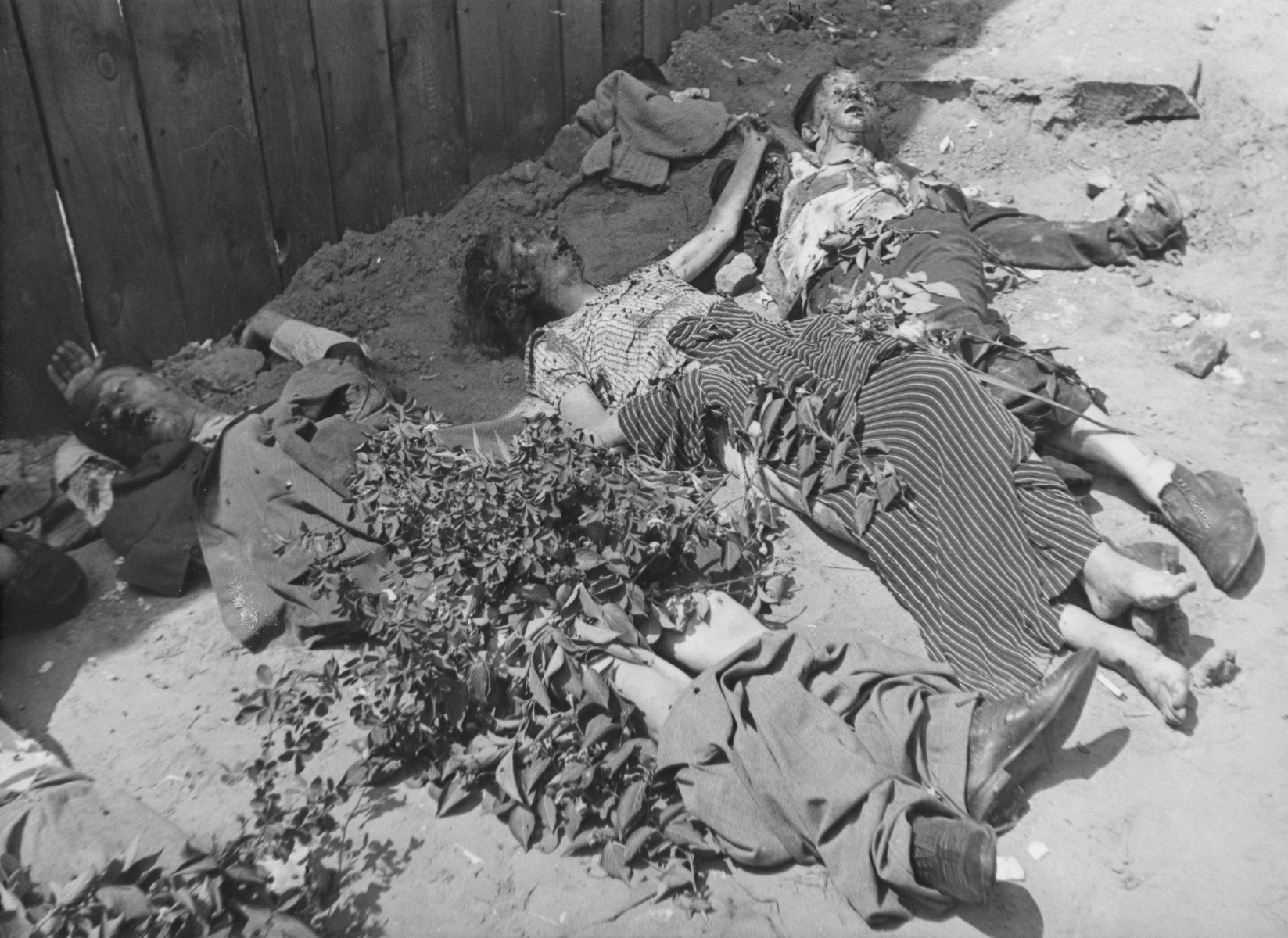 """The corpses of individuals murdered by the NKVD (Soviet Secret Police) in the courtyard of a Lvov city prison.  The original caption reads:  """"Series: This is how the GPU """"work"""" in Lemberg.   By daylight bodies of murdered men and women are pulled from a basement in the Lemberg GPU prison."""""""