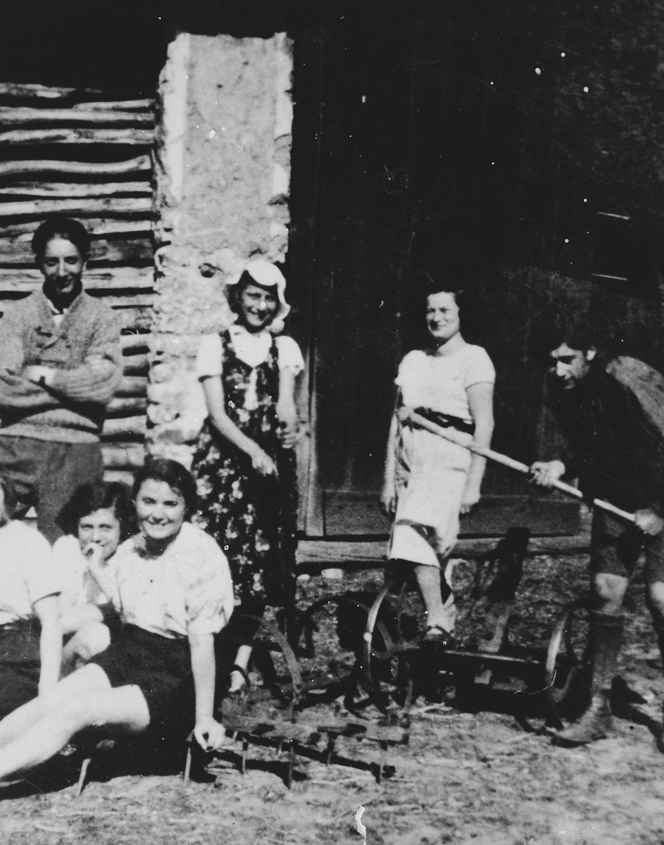 A group of Zionist youth from Dabrowa Gornicza work in a farming hachshara.
