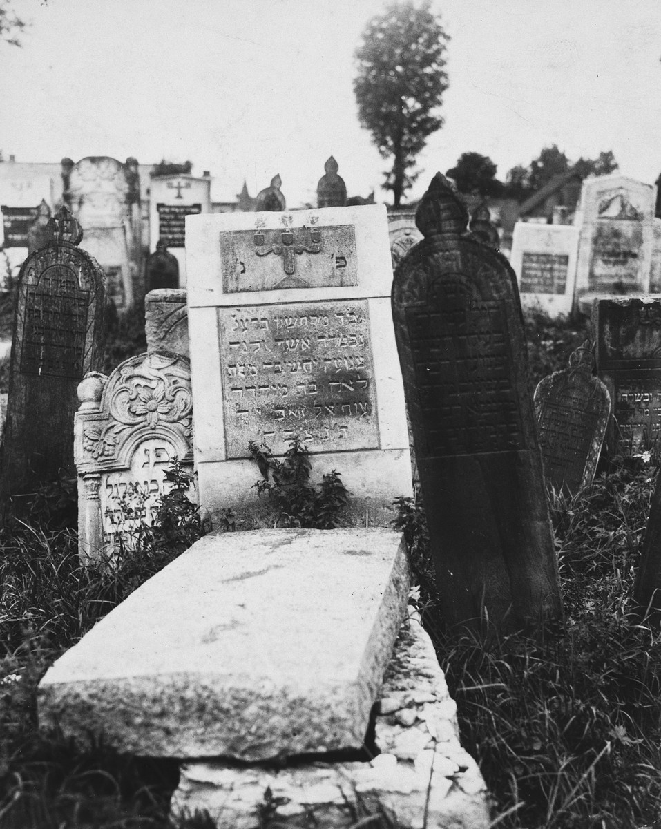 View of a tombstone in the Jewish cemetery in Drohobycz.